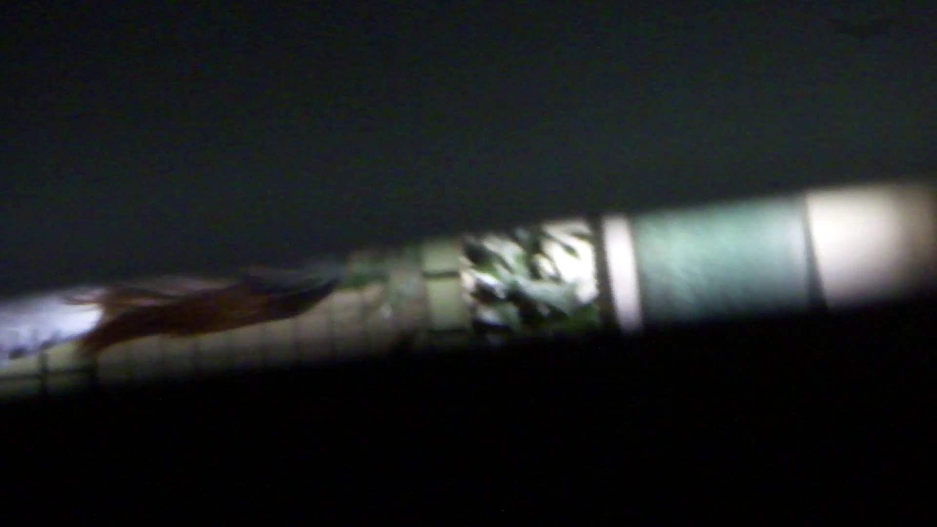 JD盗撮 美女の洗面所の秘密 Vol.76 高画質 オメコ無修正動画無料 99画像 88