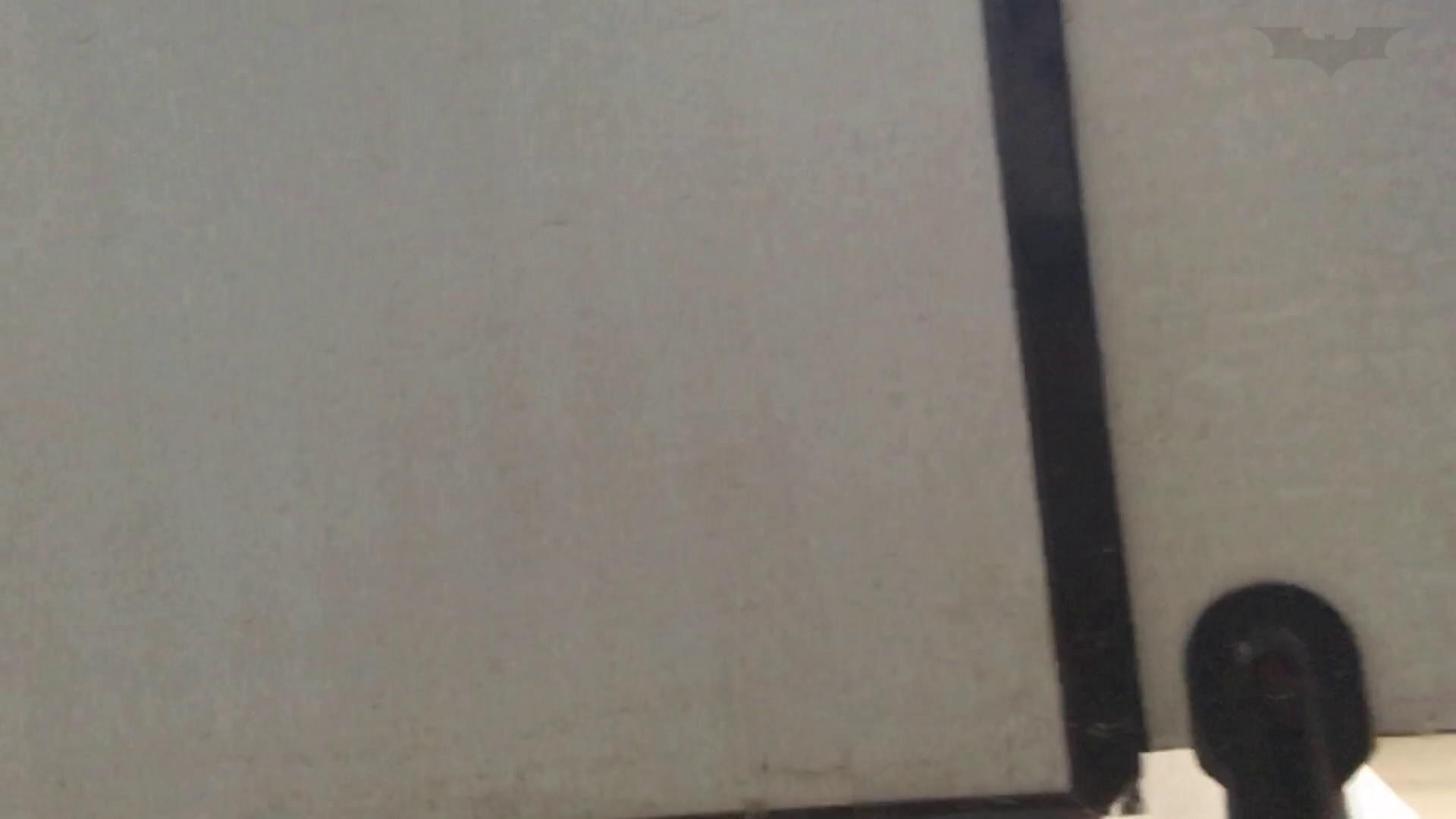 芸術大学ガチ潜入盗撮 JD盗撮 美女の洗面所の秘密 Vol.80 高画質 濡れ場動画紹介 69画像 67