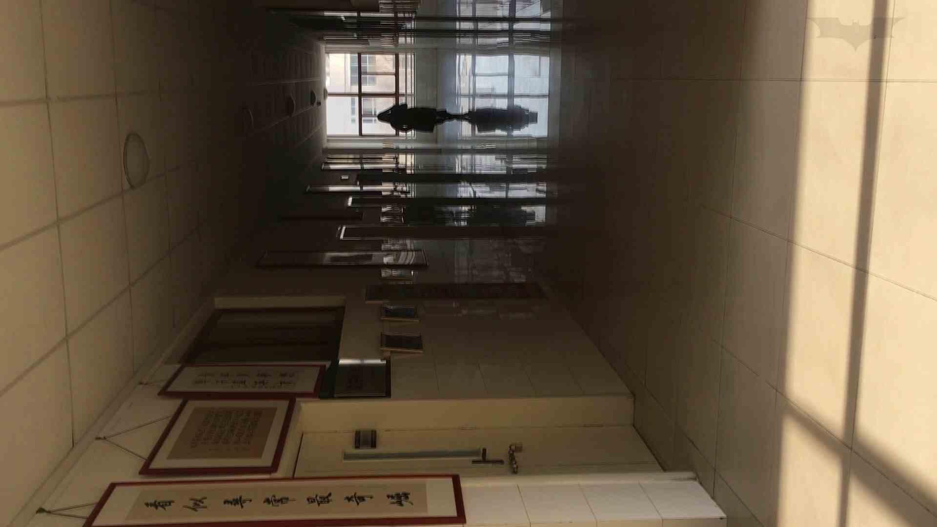 芸術大学ガチ潜入盗撮 JD盗撮 美女の洗面所の秘密 Vol.88 美女 われめAV動画紹介 56画像 41