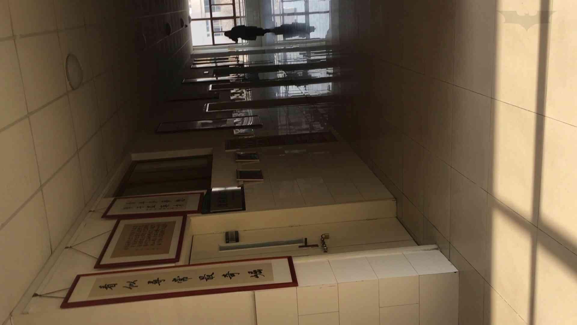 芸術大学ガチ潜入盗撮 JD盗撮 美女の洗面所の秘密 Vol.93 高画質 ヌード画像 62画像 7