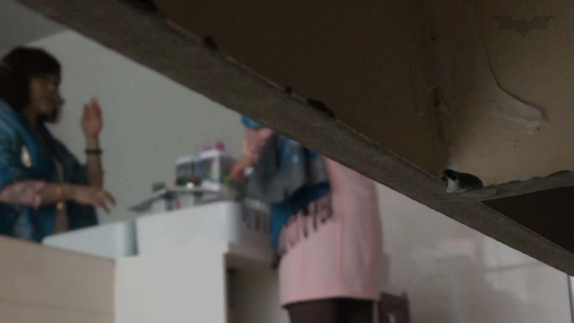 芸術大学ガチ潜入盗撮 JD盗撮 美女の洗面所の秘密 Vol.113 ギャル攻め AV動画キャプチャ 74画像 14
