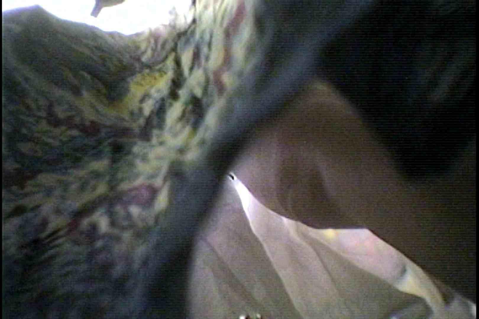 会員No.22 KAIさんのパンチラOL通勤の会 ギャル攻め 性交動画流出 74画像 2