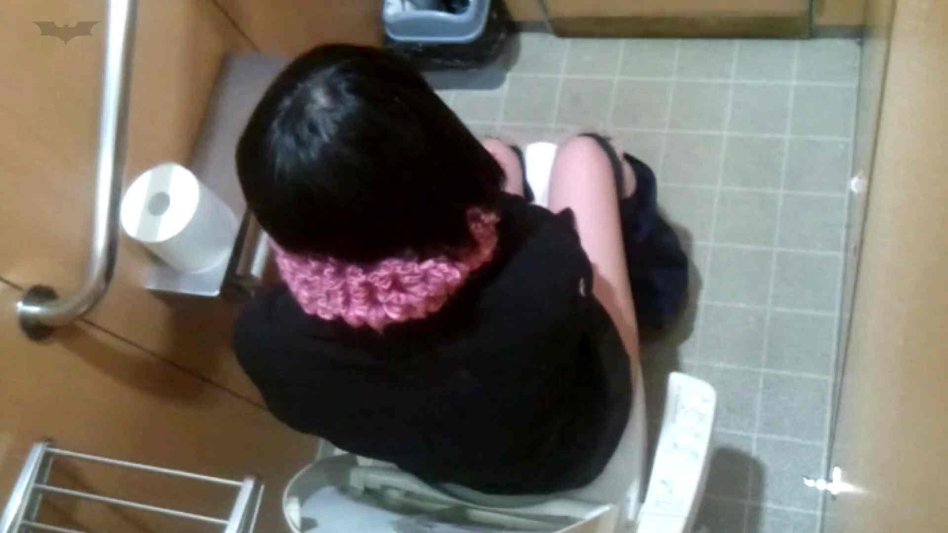 化粧室絵巻 商い場編 VOL.22 洗面所 オメコ動画キャプチャ 53画像 18