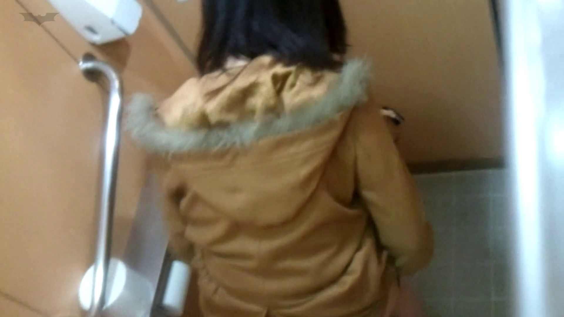 化粧室絵巻 商い場編 VOL.22 洗面所 オメコ動画キャプチャ 53画像 38