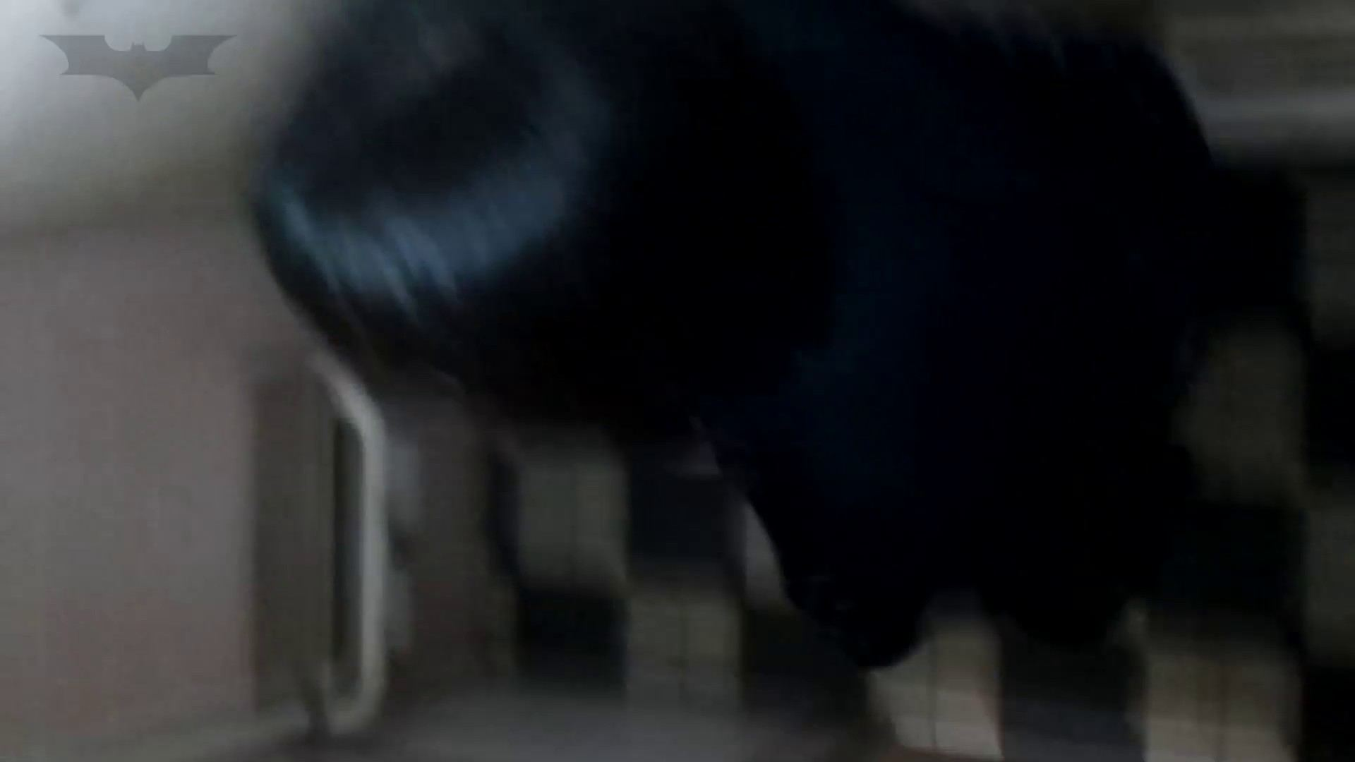 ▲復活限定D▲化粧室絵巻 駅舎編 VOL.12 SEIFUKUマフラー特集!! 洗面所 | ギャル攻め  100画像 89
