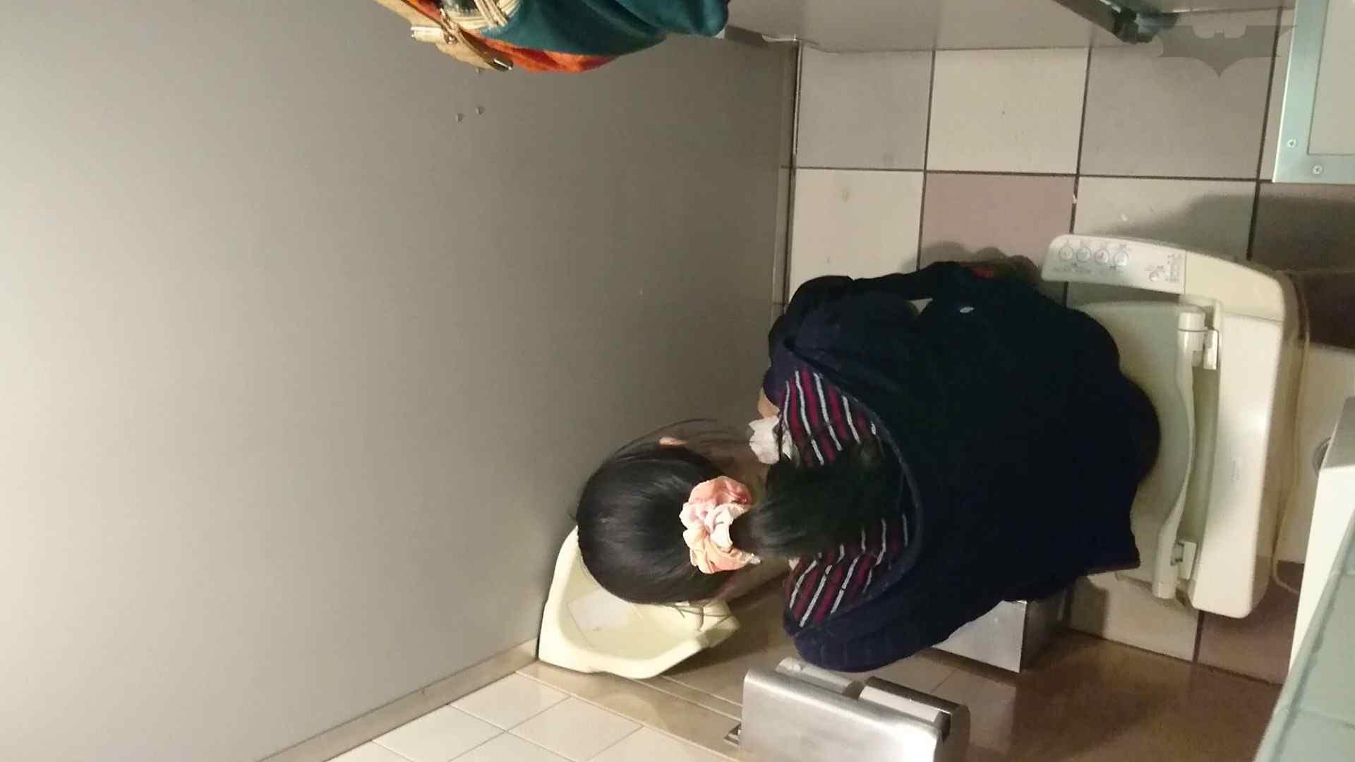 化粧室絵巻 ショッピングモール編 VOL.16 美肌 すけべAV動画紹介 55画像 4