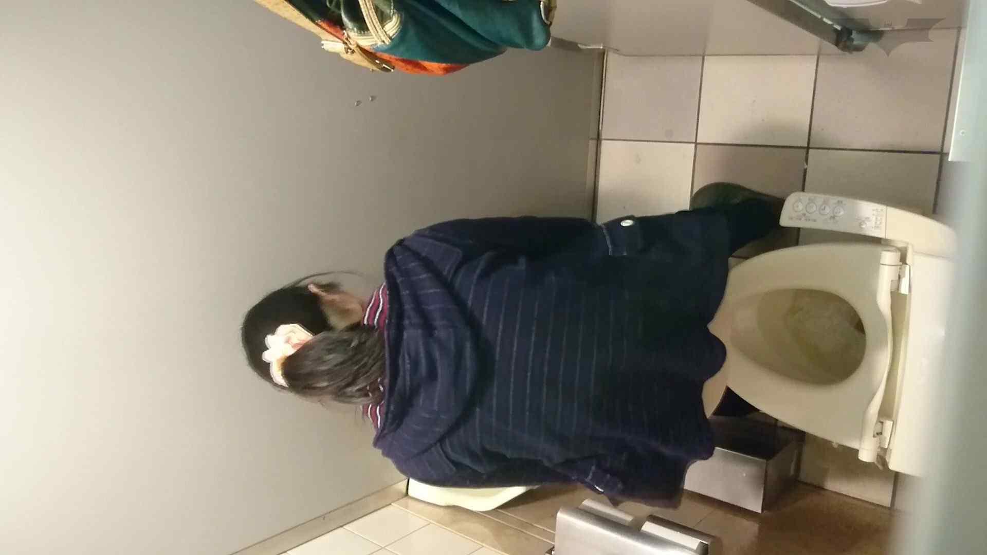 化粧室絵巻 ショッピングモール編 VOL.16 細身女性 ワレメ無修正動画無料 55画像 13