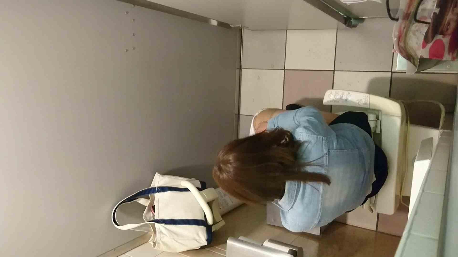 化粧室絵巻 ショッピングモール編 VOL.16 美肌 すけべAV動画紹介 55画像 44