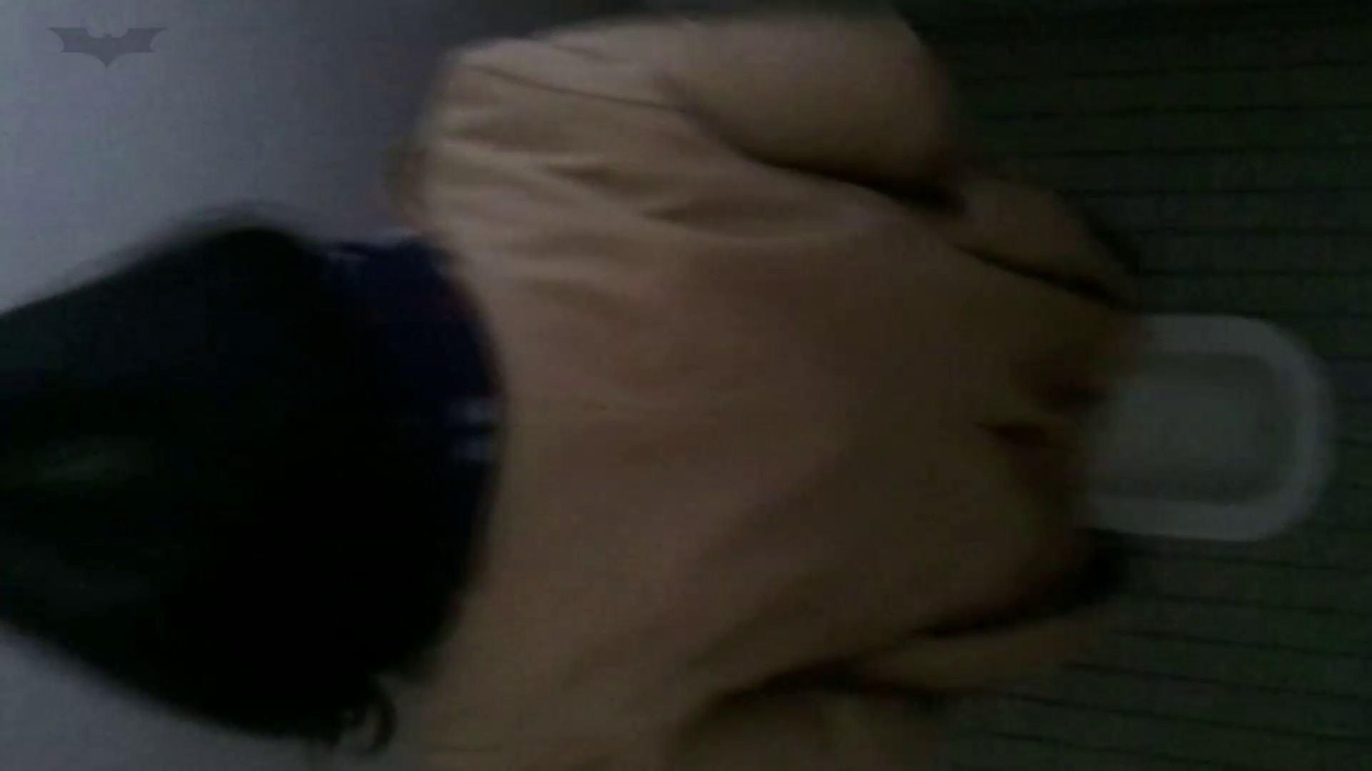 化粧室絵巻 番外編 VOL.24 むっちり われめAV動画紹介 71画像 33