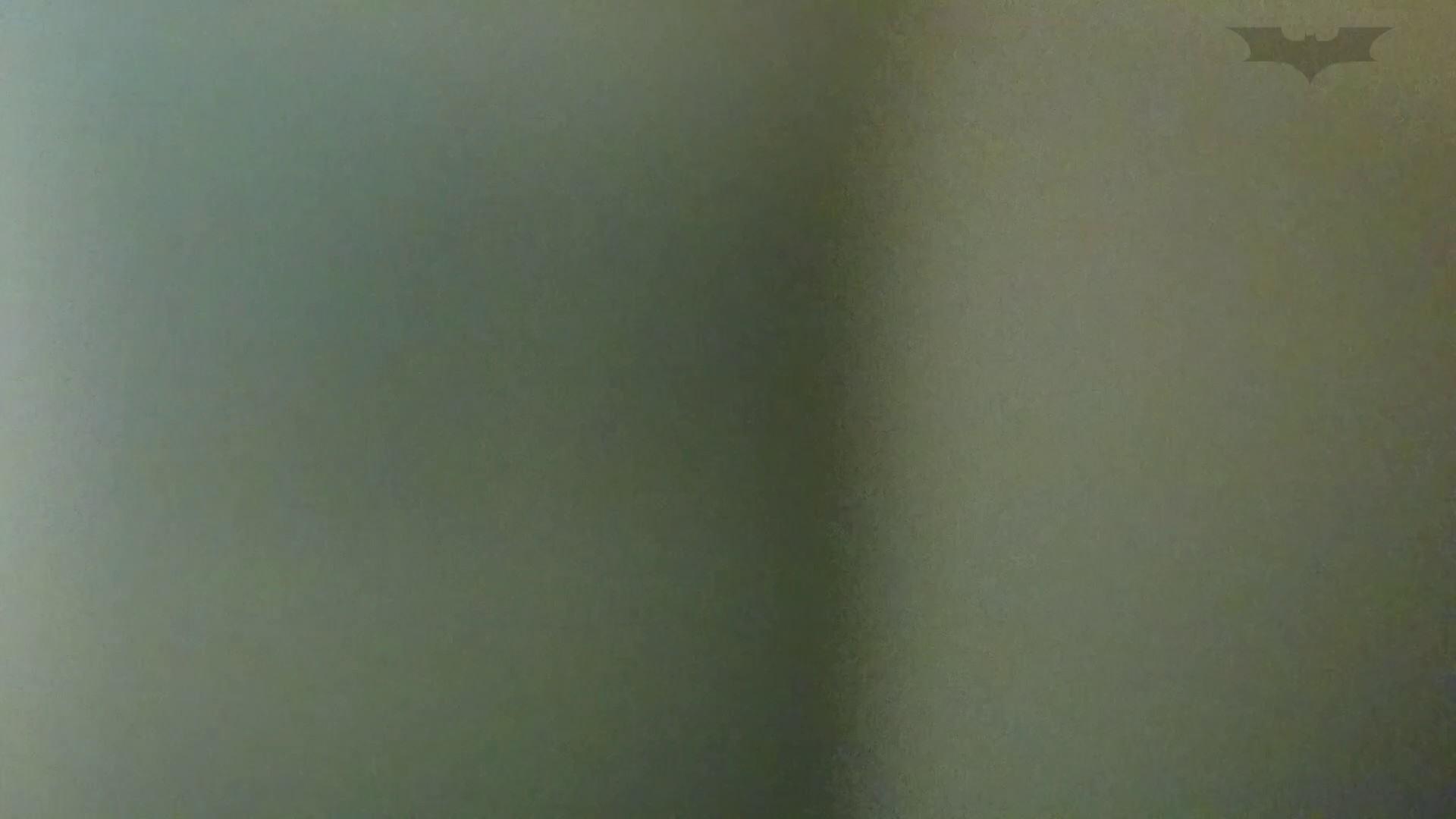 化粧室絵巻 ショッピングモール編 VOL.13 盛合せ AV無料 89画像 44