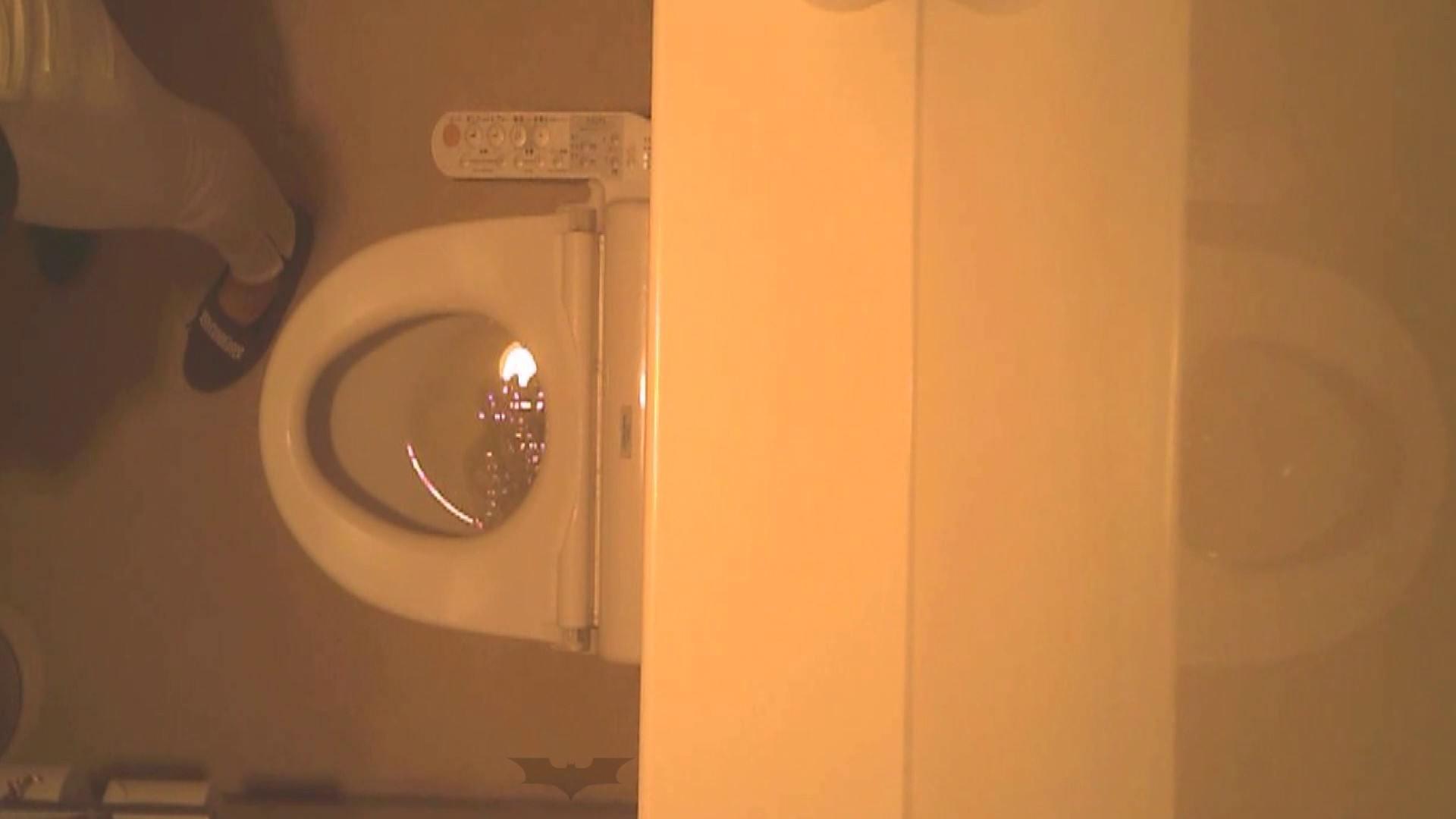 潜入!!全国女子洗面所盗撮 Vol.07 高画質 オメコ動画キャプチャ 110画像 4