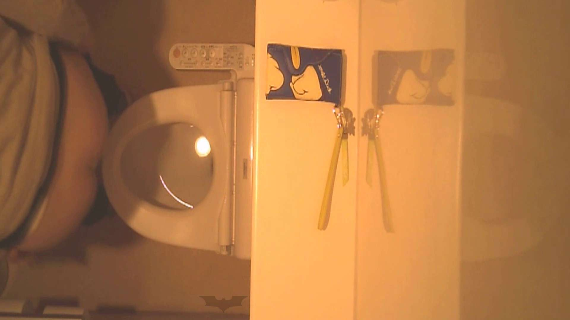 潜入!!全国女子洗面所盗撮 Vol.07 洗面所 セックス無修正動画無料 110画像 11