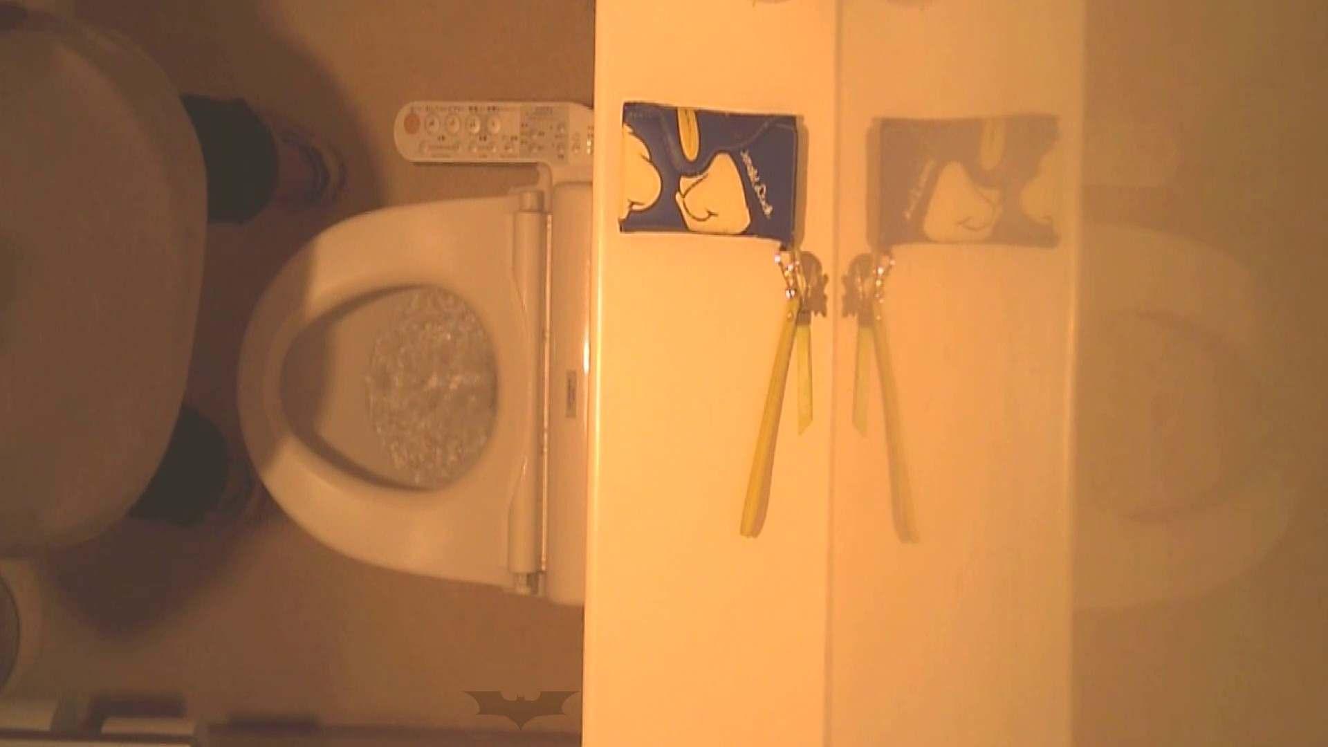潜入!!全国女子洗面所盗撮 Vol.07 高画質 オメコ動画キャプチャ 110画像 20