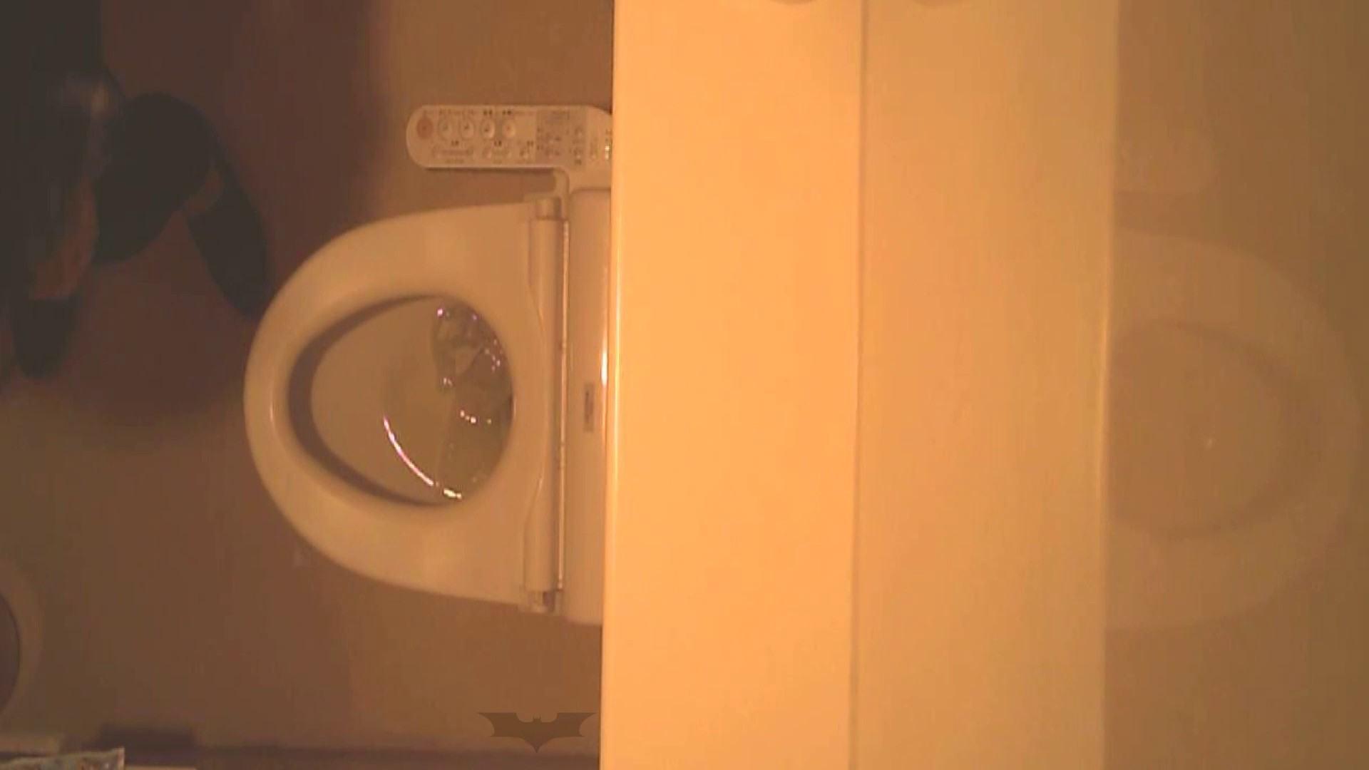 潜入!!全国女子洗面所盗撮 Vol.07 高画質 オメコ動画キャプチャ 110画像 28