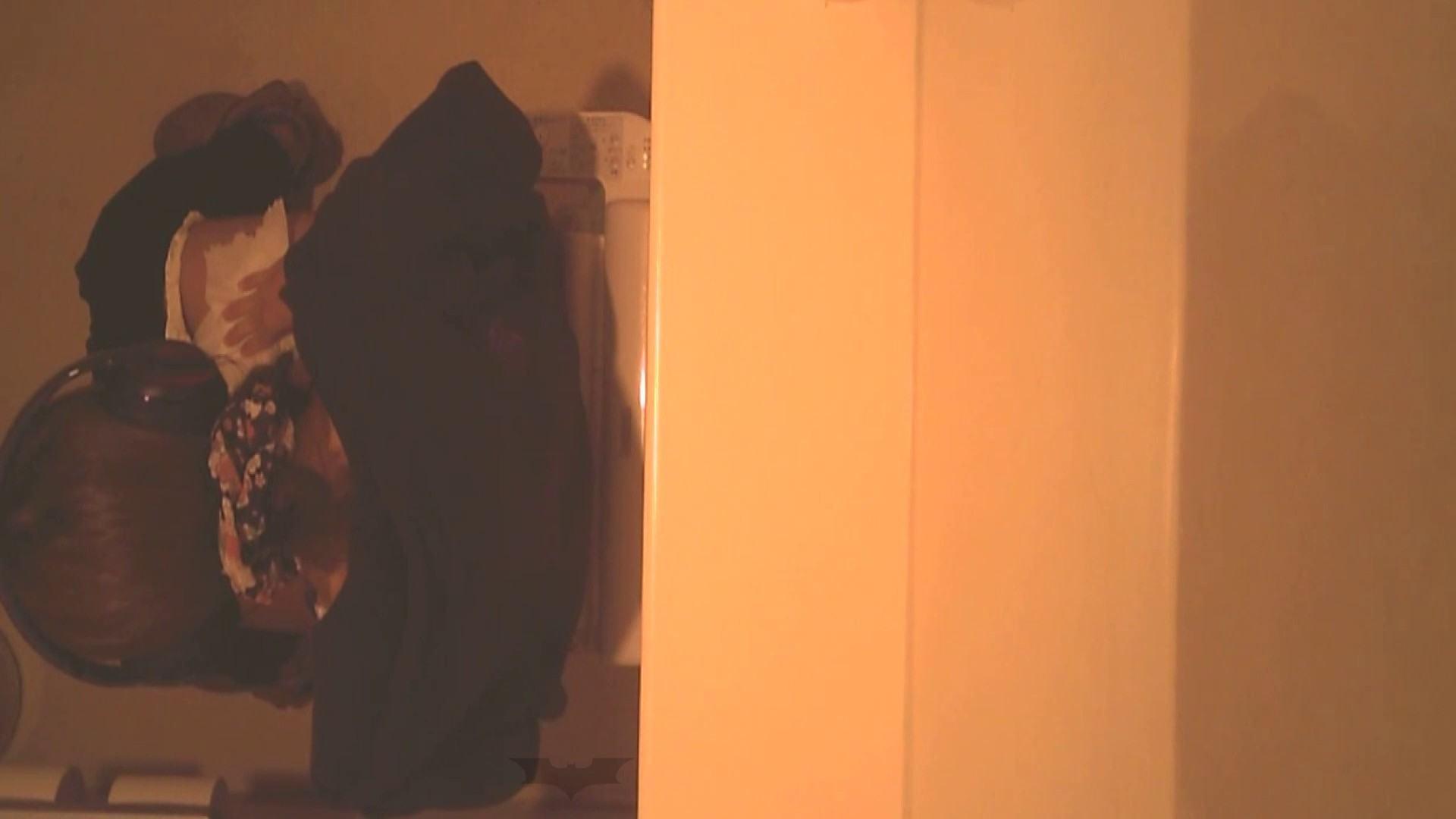 潜入!!全国女子洗面所盗撮 Vol.07 投稿 セックス画像 110画像 38