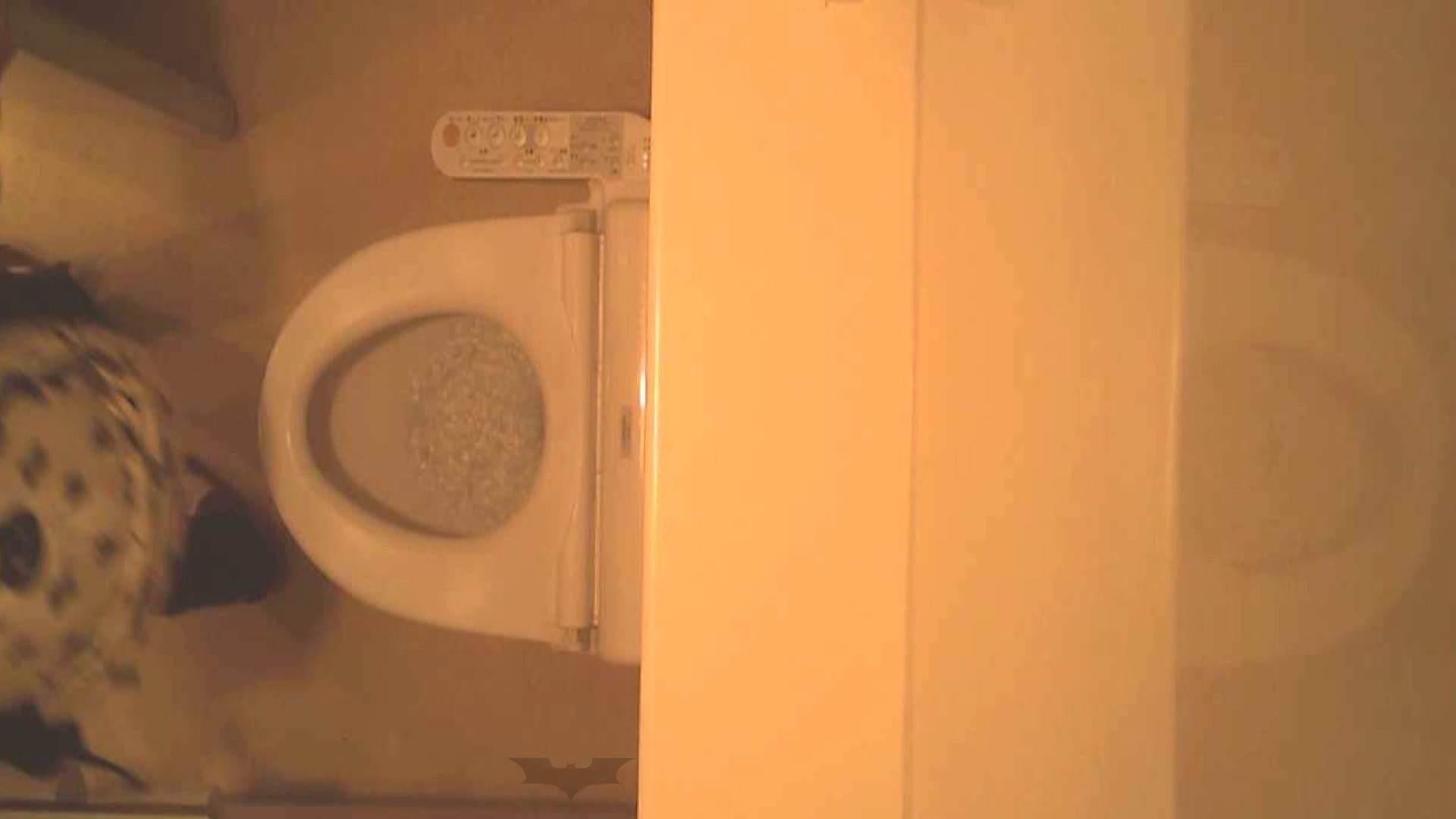 潜入!!全国女子洗面所盗撮 Vol.07 高画質 オメコ動画キャプチャ 110画像 52