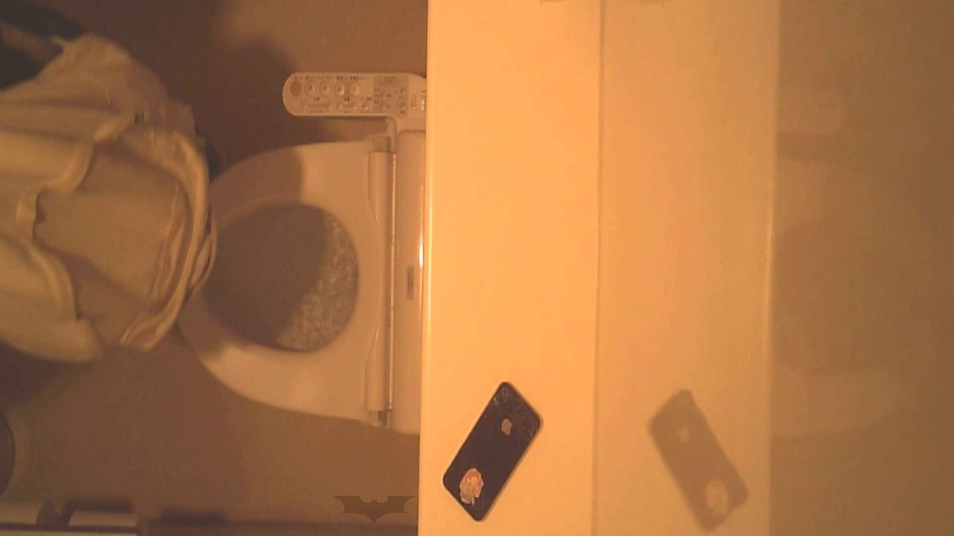 潜入!!全国女子洗面所盗撮 Vol.07 盗撮で悶絶 AV無料動画キャプチャ 110画像 53