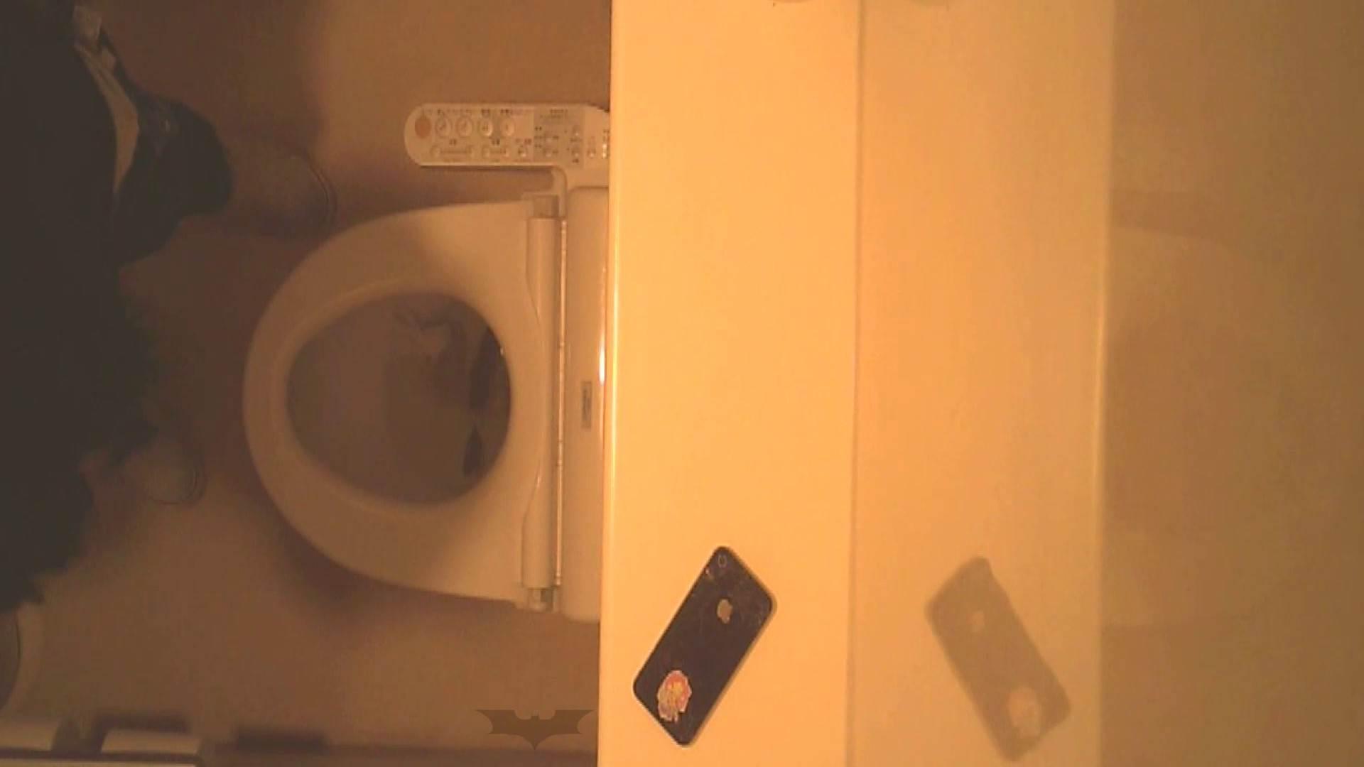 潜入!!全国女子洗面所盗撮 Vol.07 高画質 オメコ動画キャプチャ 110画像 60