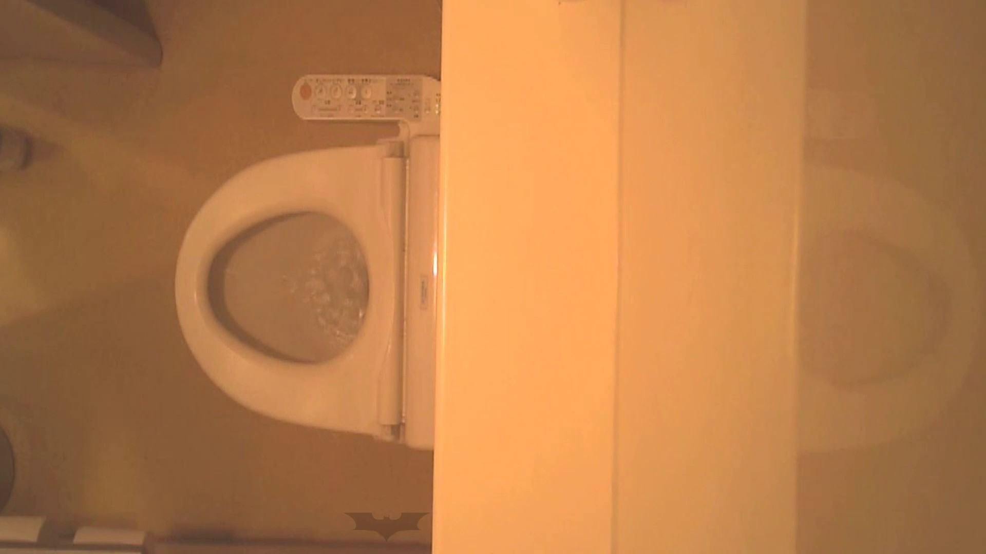 潜入!!全国女子洗面所盗撮 Vol.07 ギャル攻め スケベ動画紹介 110画像 66