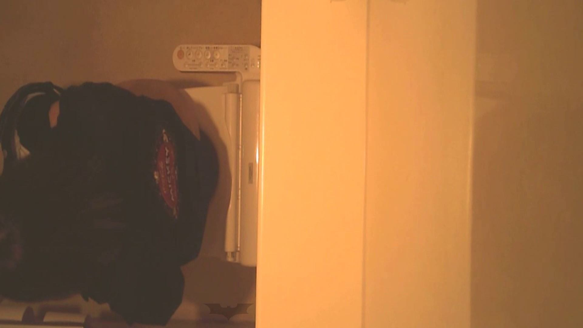 潜入!!全国女子洗面所盗撮 Vol.07 投稿 セックス画像 110画像 70