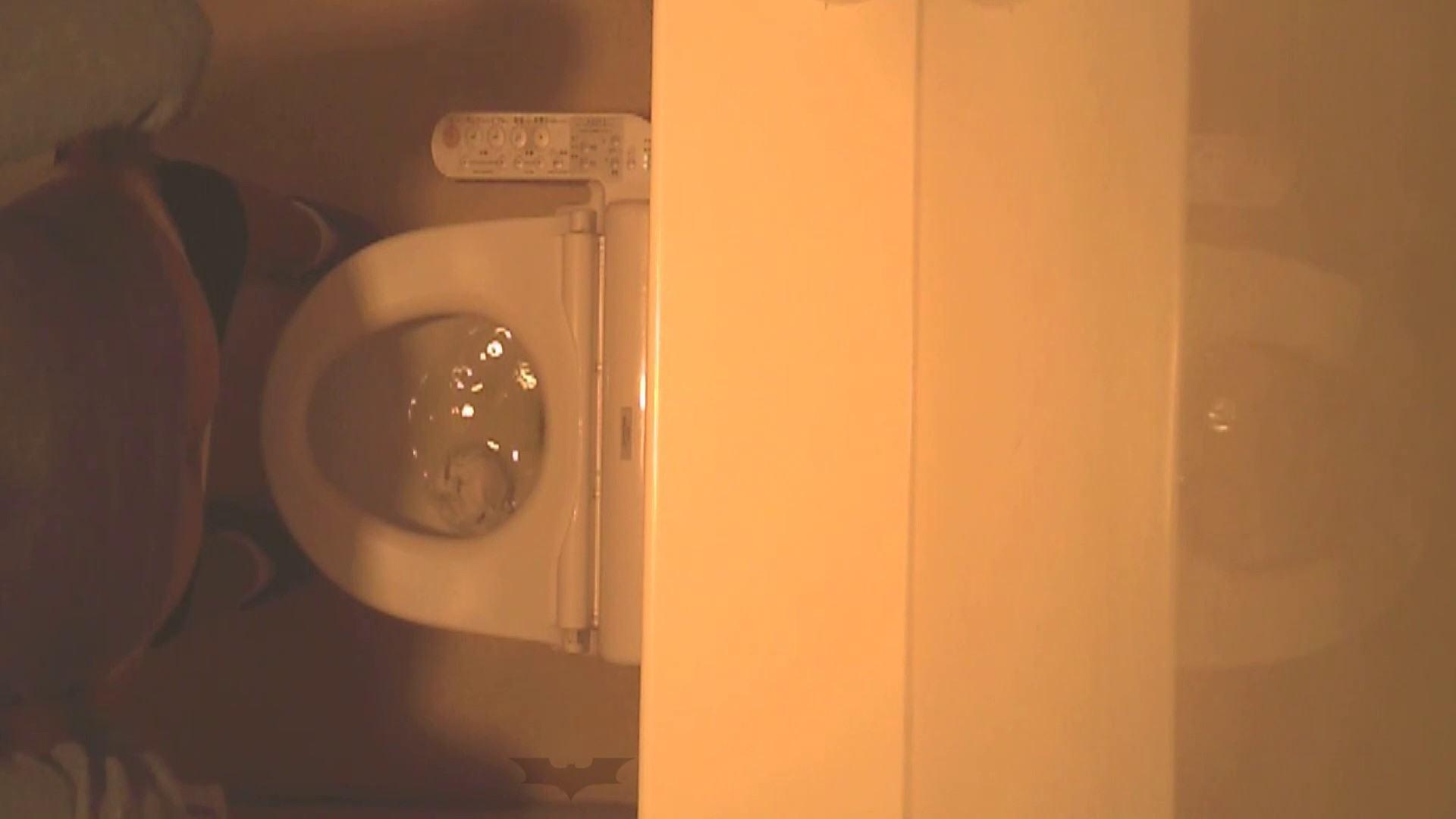 潜入!!全国女子洗面所盗撮 Vol.07 投稿 セックス画像 110画像 78