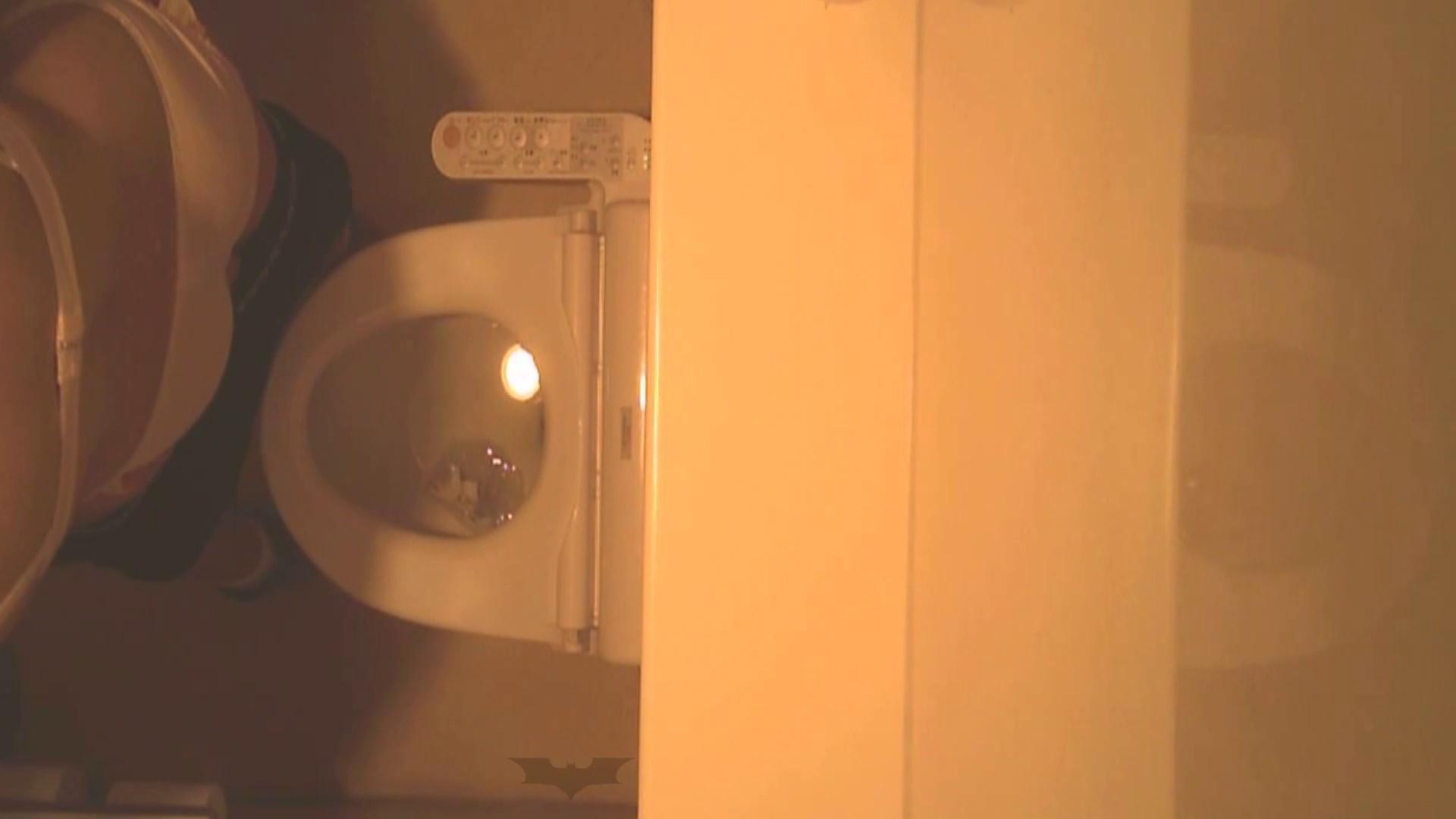潜入!!全国女子洗面所盗撮 Vol.07 ギャル攻め スケベ動画紹介 110画像 82
