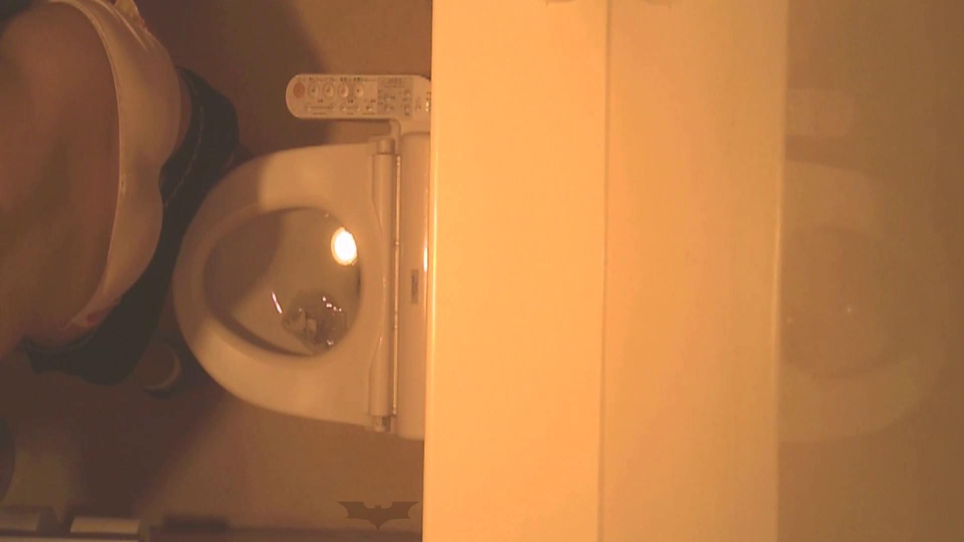 潜入!!全国女子洗面所盗撮 Vol.07 高画質 オメコ動画キャプチャ 110画像 84
