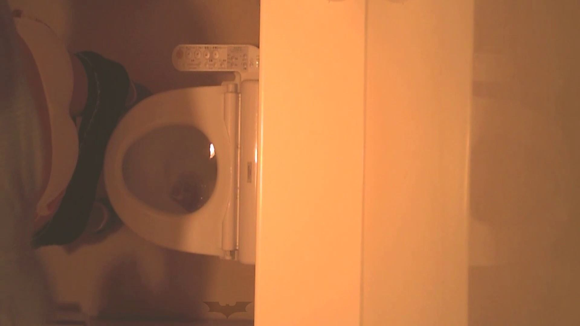 潜入!!全国女子洗面所盗撮 Vol.07 盗撮で悶絶 AV無料動画キャプチャ 110画像 93