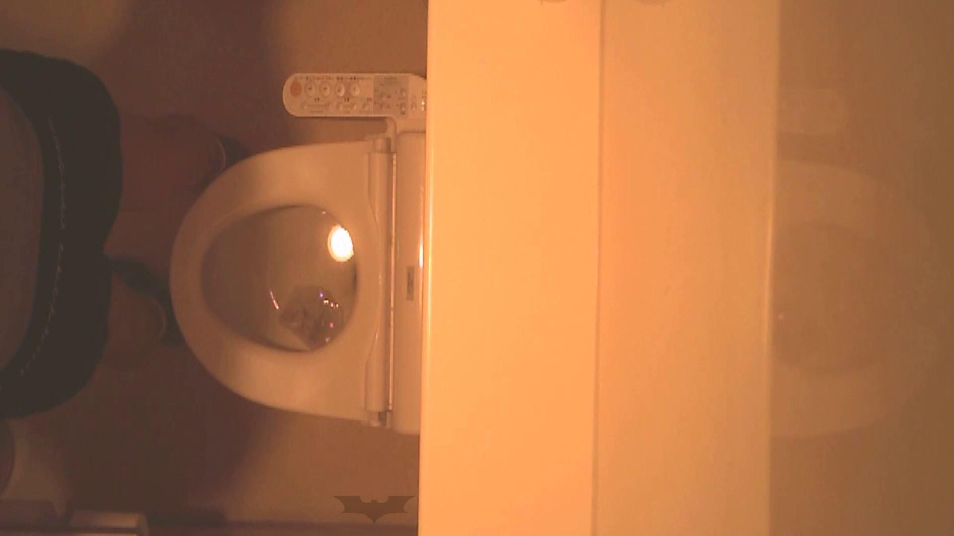 潜入!!全国女子洗面所盗撮 Vol.07 ギャル攻め スケベ動画紹介 110画像 98
