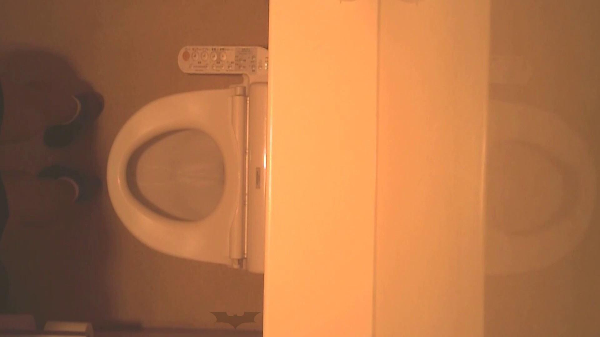 潜入!!全国女子洗面所盗撮 Vol.07 高画質 オメコ動画キャプチャ 110画像 100