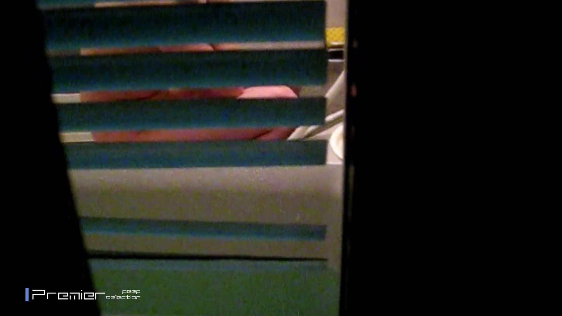 水面から透ける剛毛マン毛 乙女の風呂場 Vol.12 美乳 性交動画流出 91画像 90
