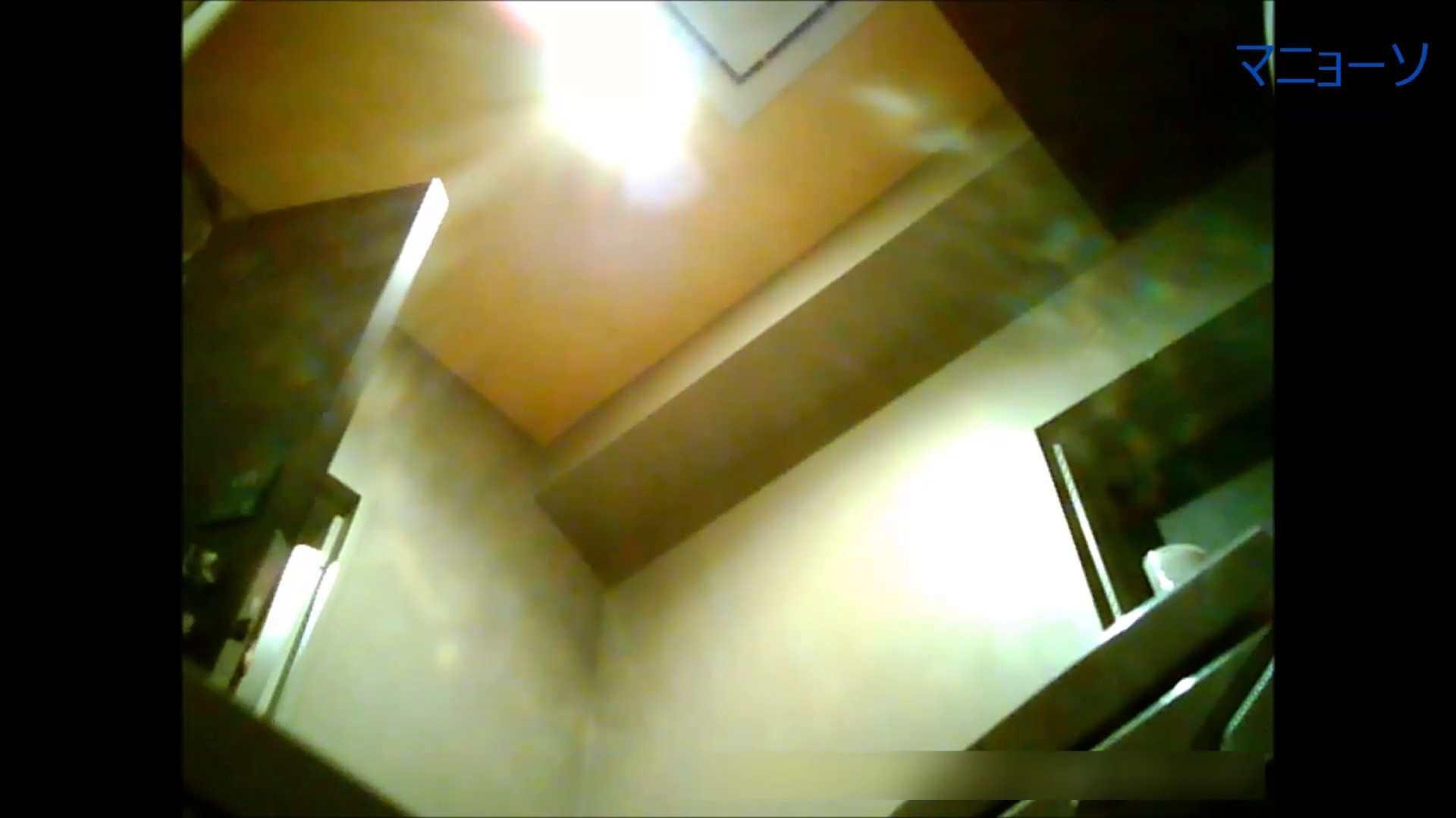 トイレでひと肌脱いでもらいました (OL編)Vol.05 高画質 性交動画流出 82画像 19