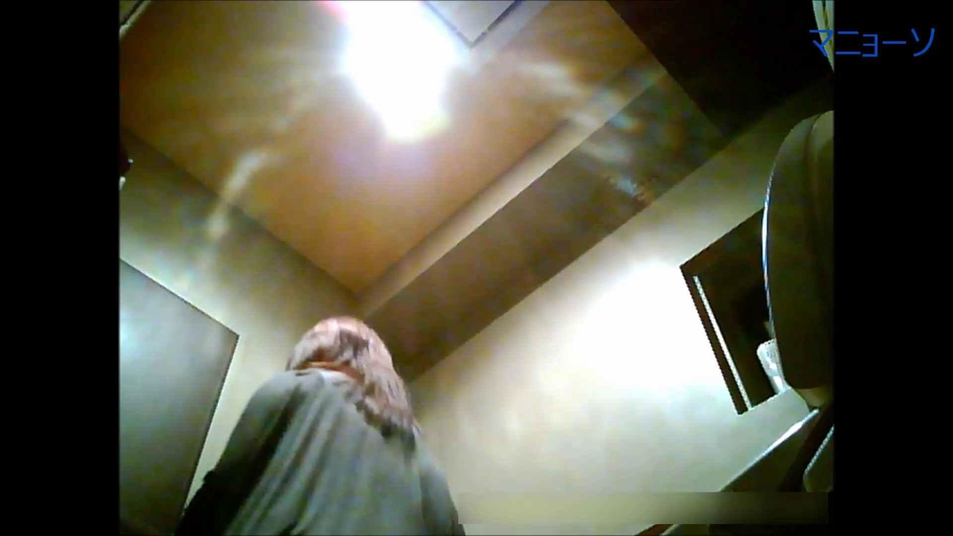 トイレでひと肌脱いでもらいました (OL編)Vol.05 高画質 性交動画流出 82画像 59