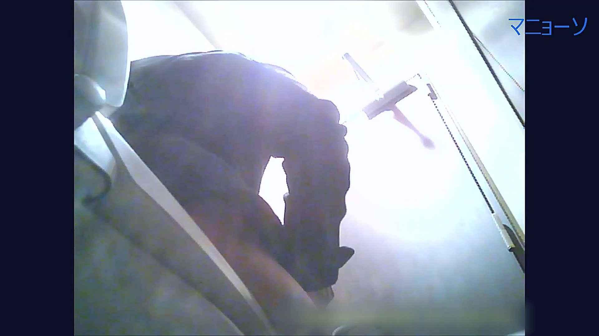 トイレでひと肌脱いでもらいました (OL編)Vol.07 高画質 AV無料動画キャプチャ 67画像 41