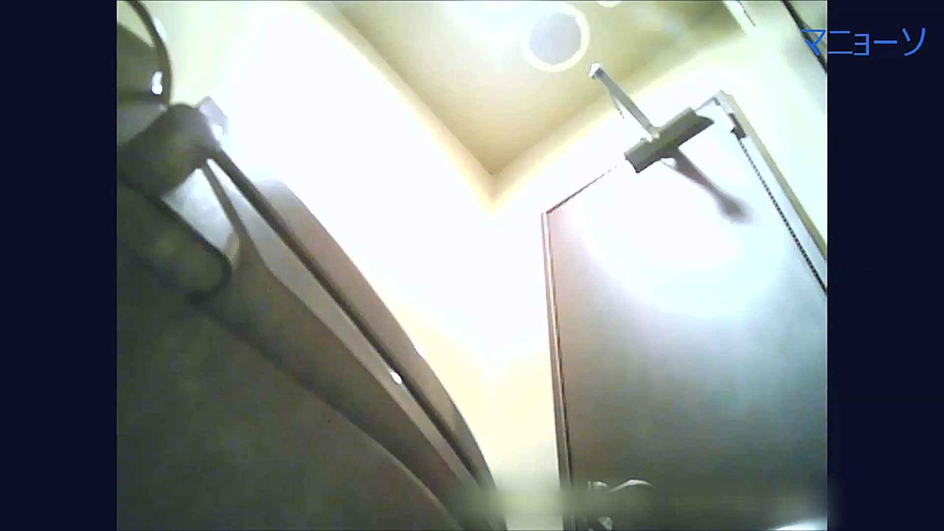 トイレでひと肌脱いでもらいました (OL編)Vol.09 丸見え ワレメ無修正動画無料 102画像 2