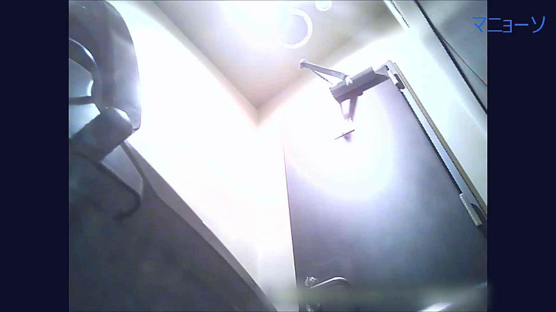 トイレでひと肌脱いでもらいました (OL編)Vol.11 盛合せ スケベ動画紹介 84画像 60