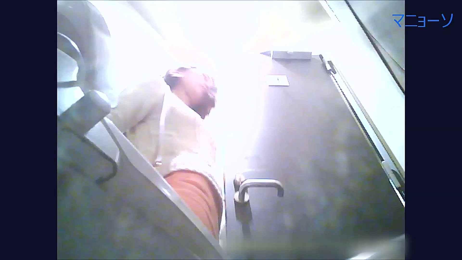 トイレでひと肌脱いでもらいました (OL編)Vol.11 トイレのぞき | 高画質  84画像 65