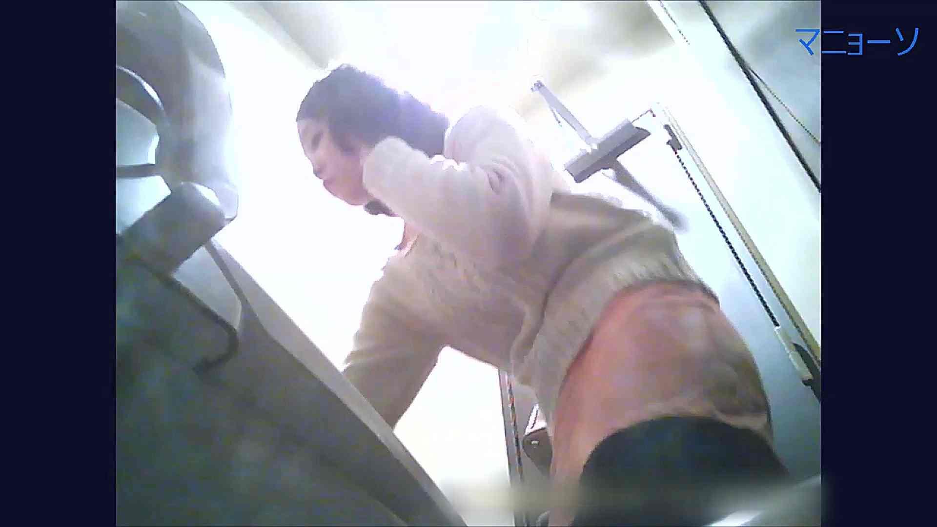 トイレでひと肌脱いでもらいました (OL編)Vol.11 お姉さん攻略 われめAV動画紹介 84画像 69