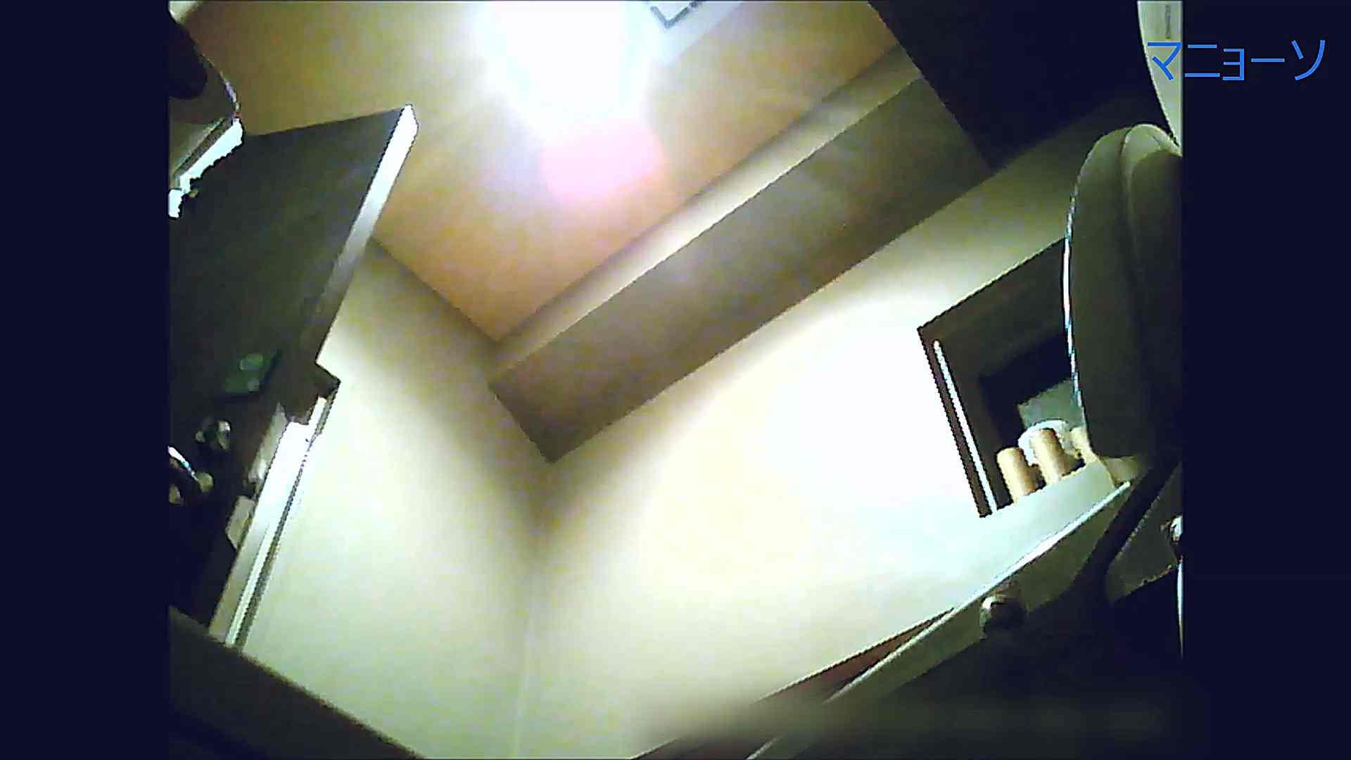 トイレでひと肌脱いでもらいました (OL編)Vol.12 トイレのぞき セックス画像 88画像 17