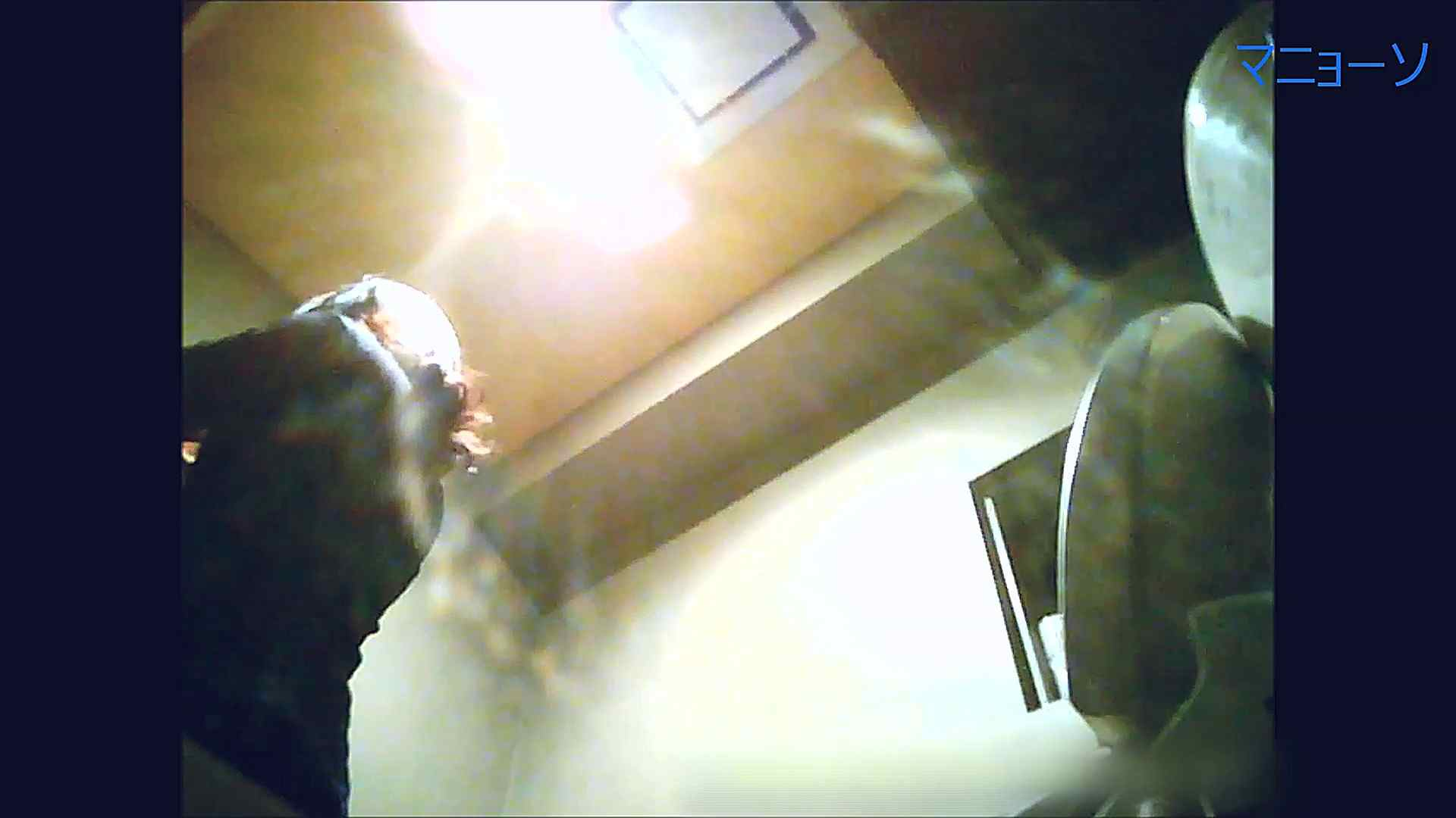 トイレでひと肌脱いでもらいました (OL編)Vol.12 丸見え SEX無修正画像 88画像 62