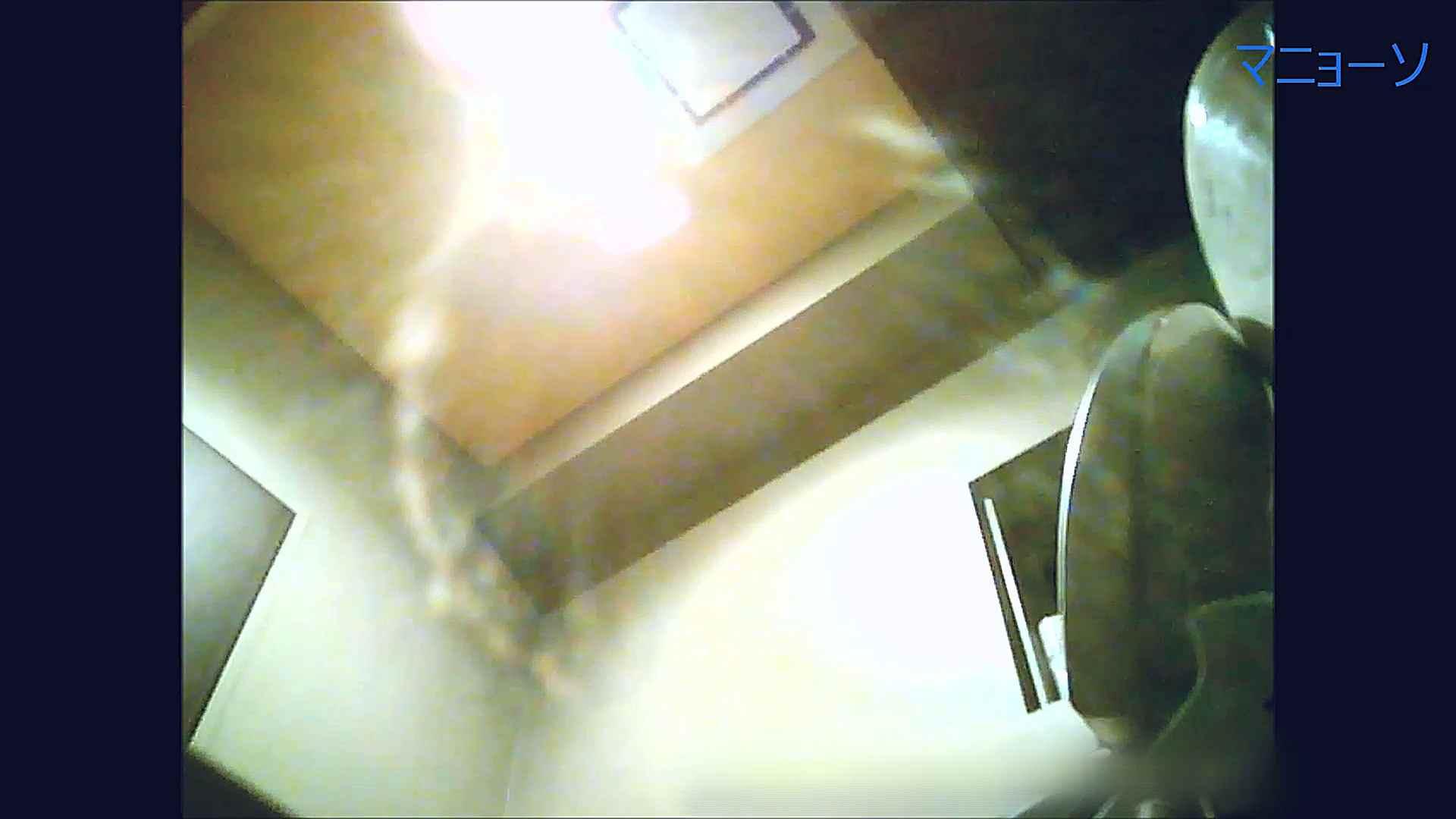 トイレでひと肌脱いでもらいました (OL編)Vol.12 丸見え SEX無修正画像 88画像 74
