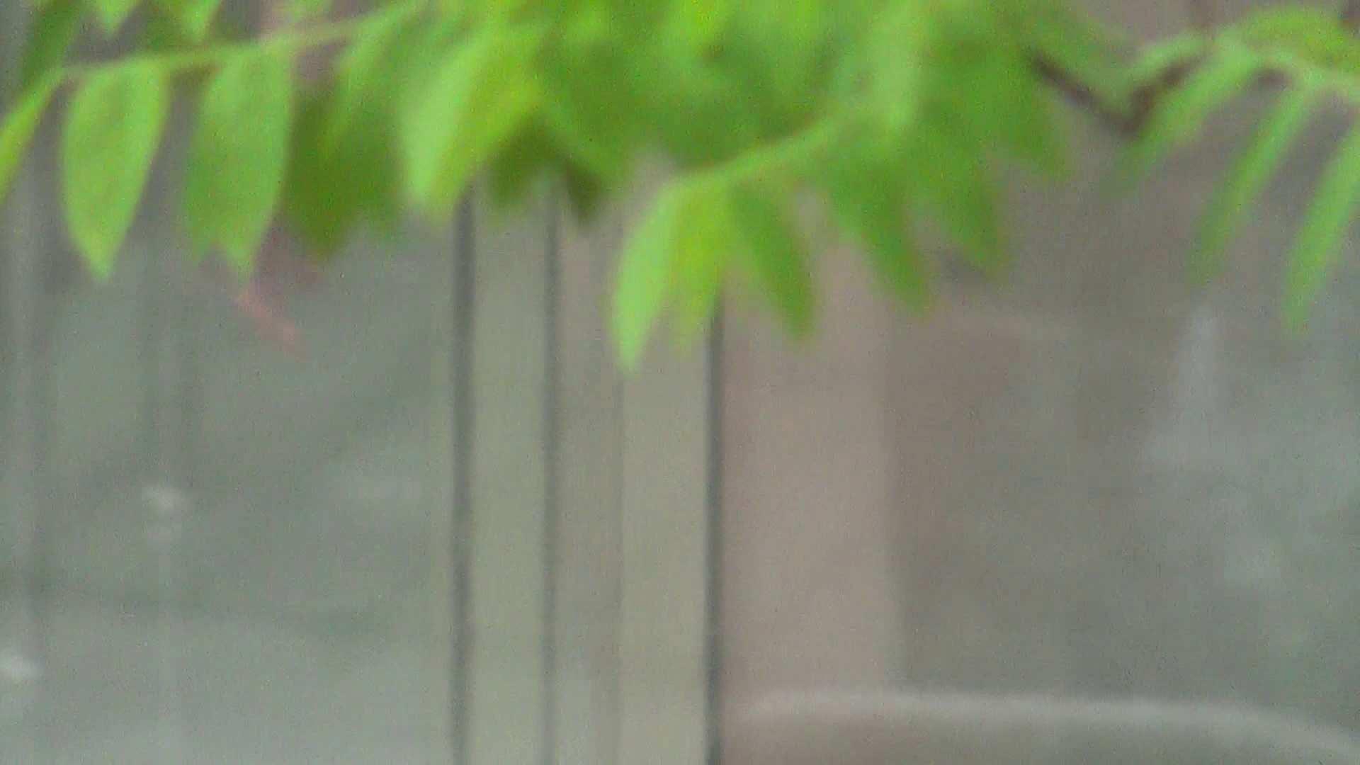 ハイビジョンVol.11 美女盛り合わせ No.5 美女   露天丸見え  68画像 1