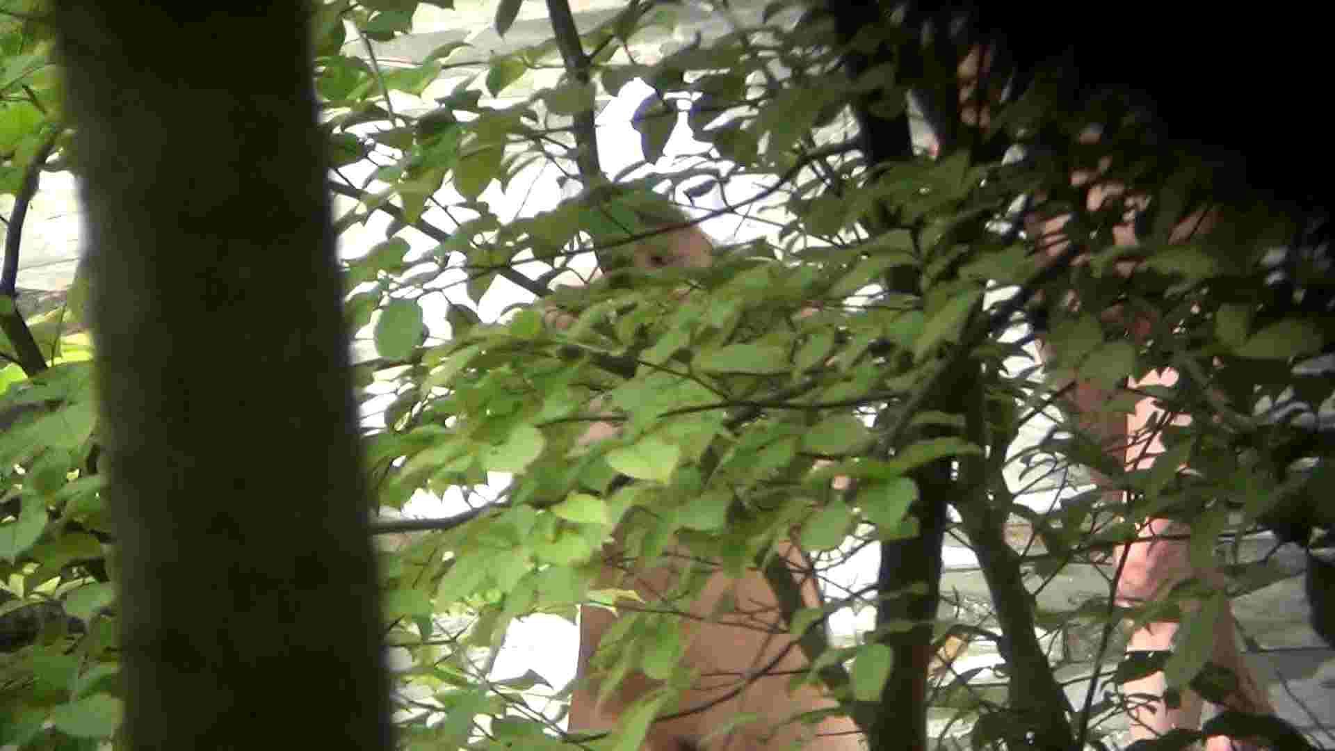 ハイビジョンVol.13 上は美人で下の下は薄いカーテン 美肌 オマンコ動画キャプチャ 82画像 2