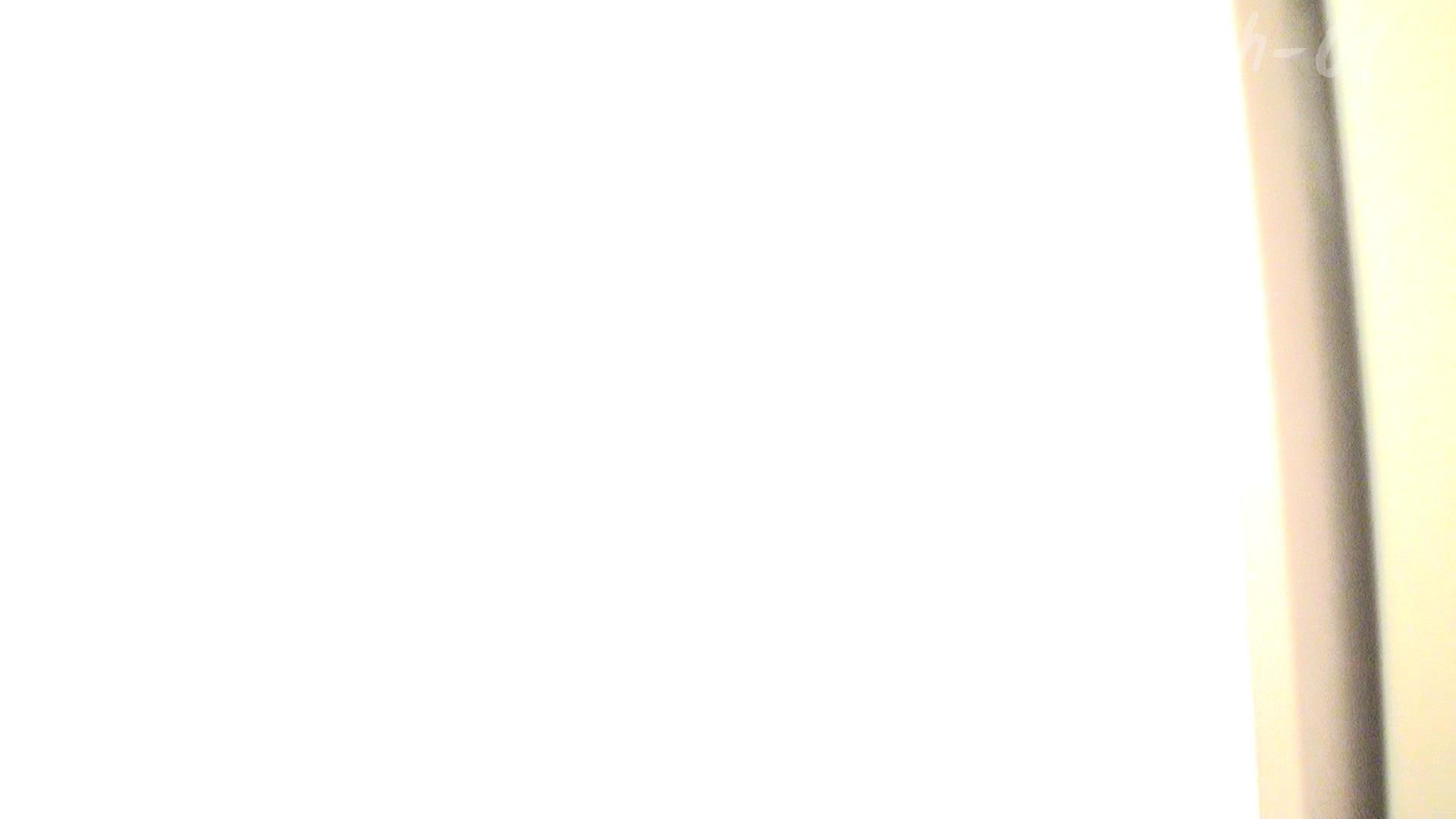 ※100個限定販売 至高下半身盗撮 プレミアム Vol.1 ハイビジョン 名作殿堂  52画像 15