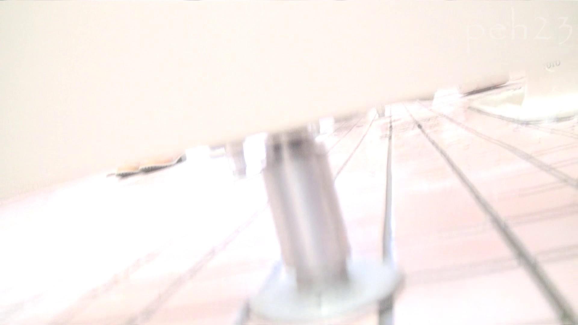 ※100個限定販売 至高下半身盗撮 プレミアム Vol.23 ハイビジョン 丸見え オメコ動画キャプチャ 88画像 83