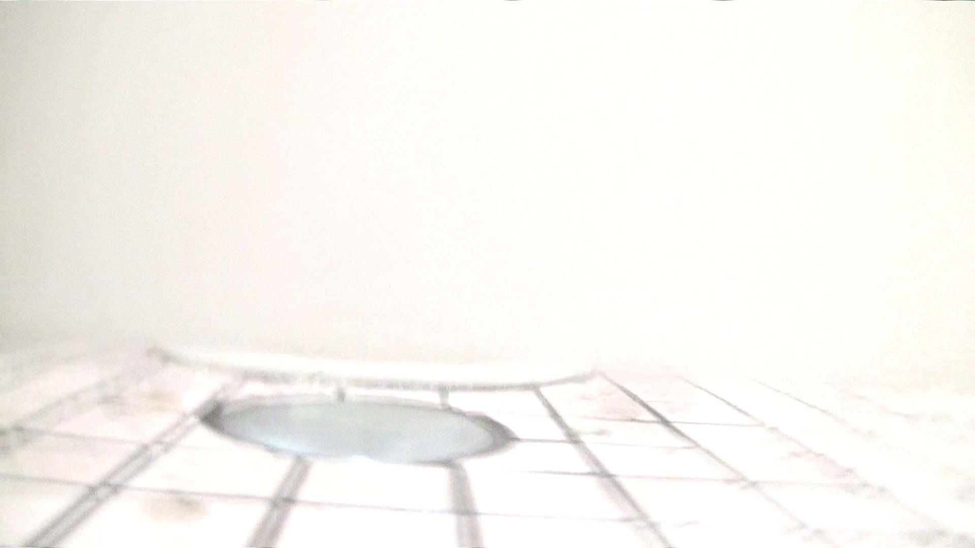 ※100個限定販売 至高下半身盗撮 プレミアム Vol.16 ハイビジョン お姉さん攻略 エロ画像 76画像 76