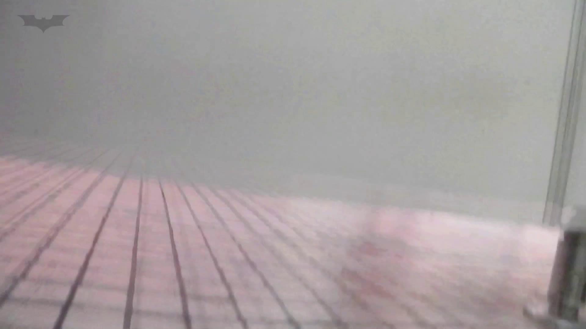 第三体育館潜入撮File015 「進化」の最後に登場した美人がついに入室! 期間限定シリーズ オマンコ無修正動画無料 99画像 67