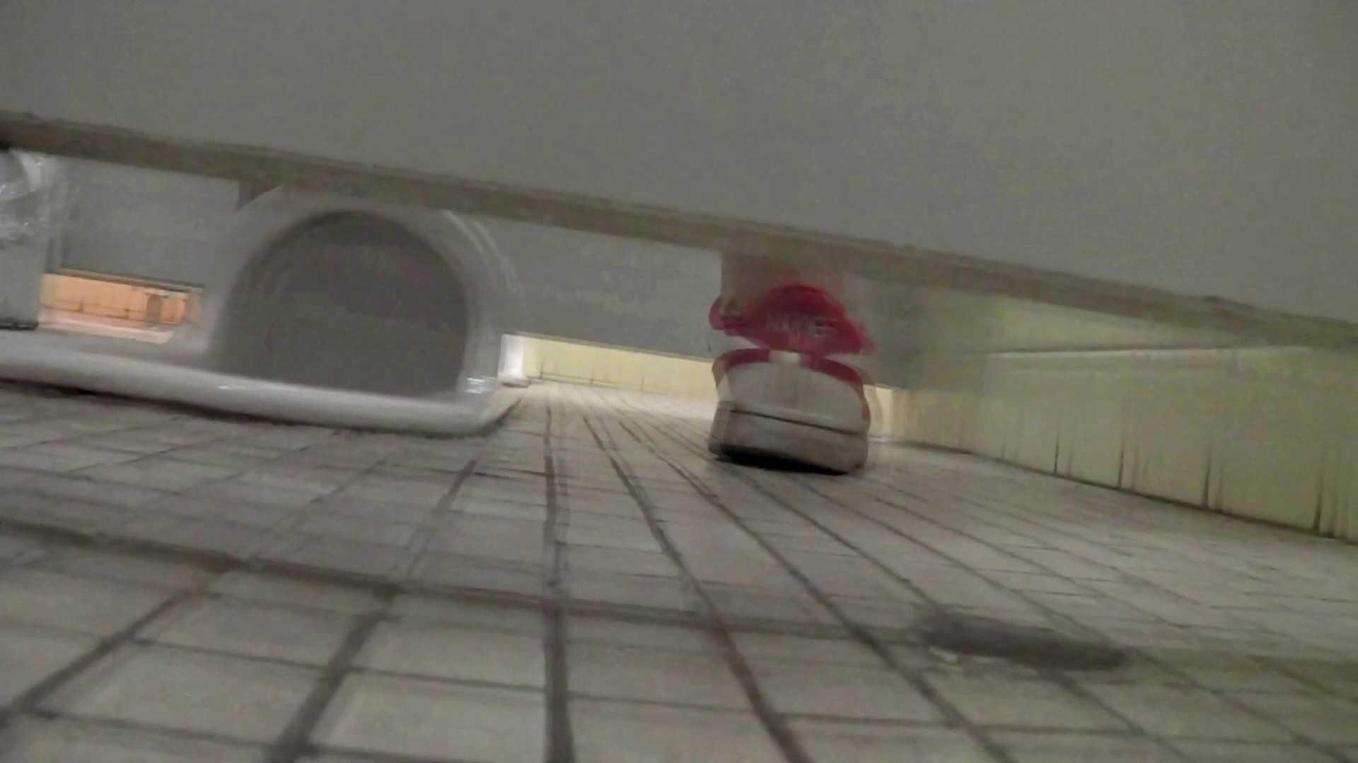第三体育館潜入撮 File17 大・小・その他色々、ぎっしり詰まった一本 ギャル攻め すけべAV動画紹介 97画像 34