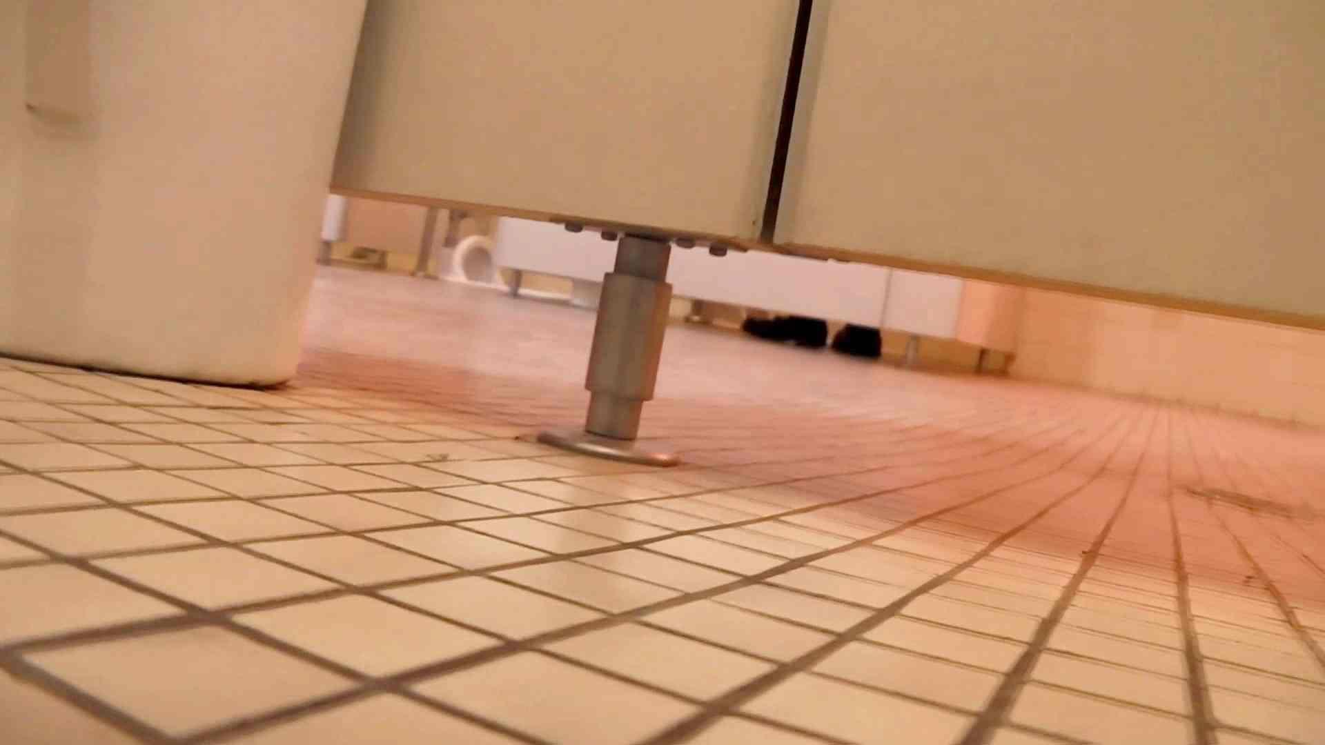 第三体育館潜入撮 File17 大・小・その他色々、ぎっしり詰まった一本 体育館で スケベ動画紹介 97画像 47