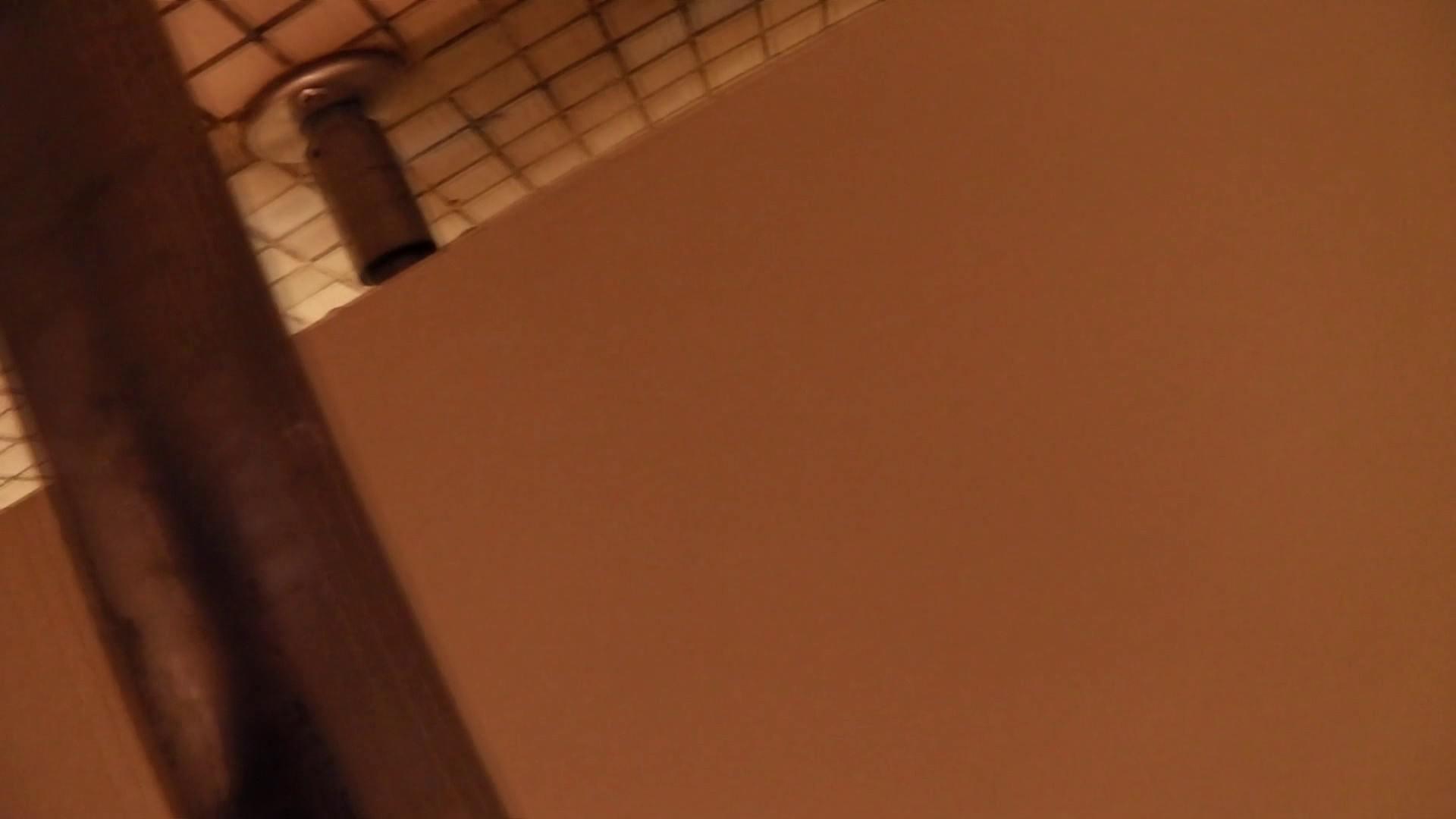 第三体育館潜入撮 File17 大・小・その他色々、ぎっしり詰まった一本 高画質 すけべAV動画紹介 97画像 85